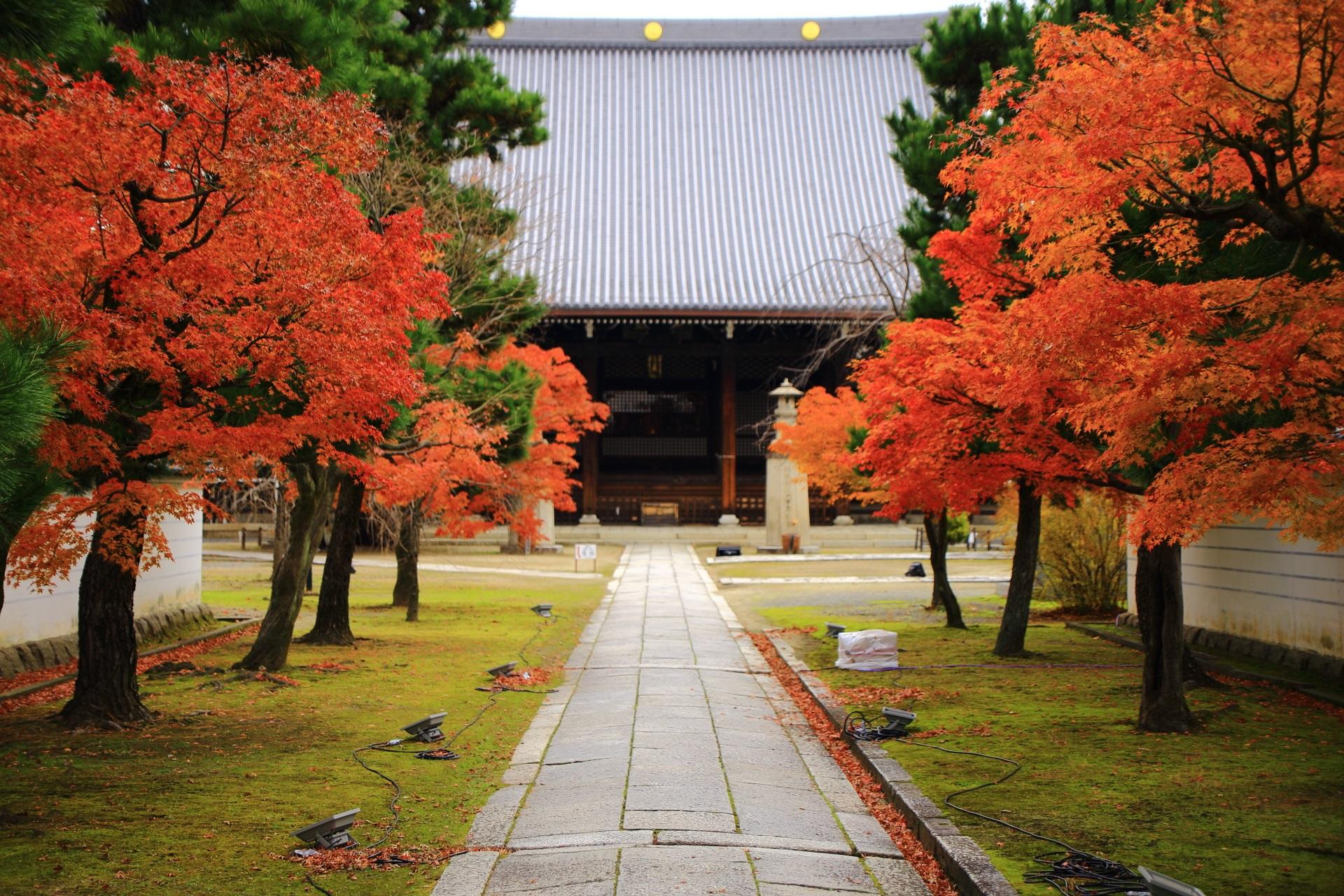 鮮やかな秋色につつまれる妙顕寺の本堂