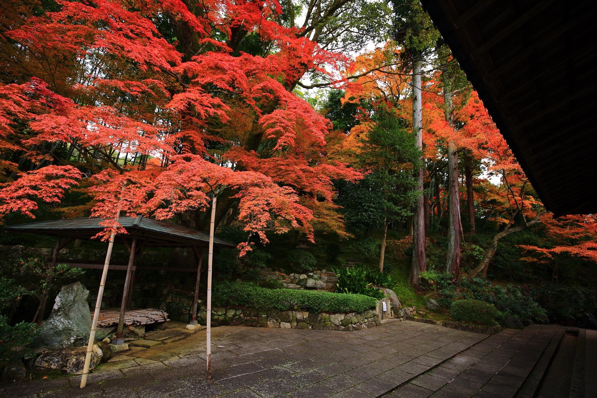 暖かく深い秋の彩りにつつまれる庭園全体