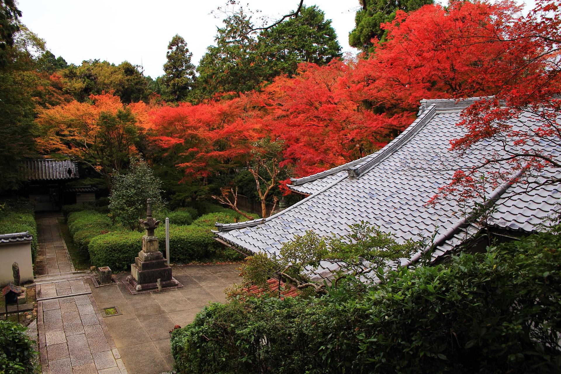 来迎院の荒神堂前から眺めた本堂や山門と見事な紅葉