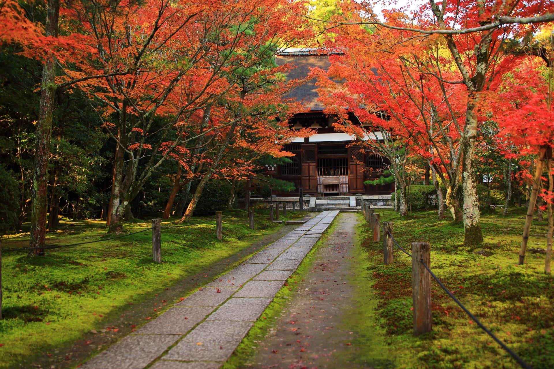 風情ある紅葉の名所の一休寺