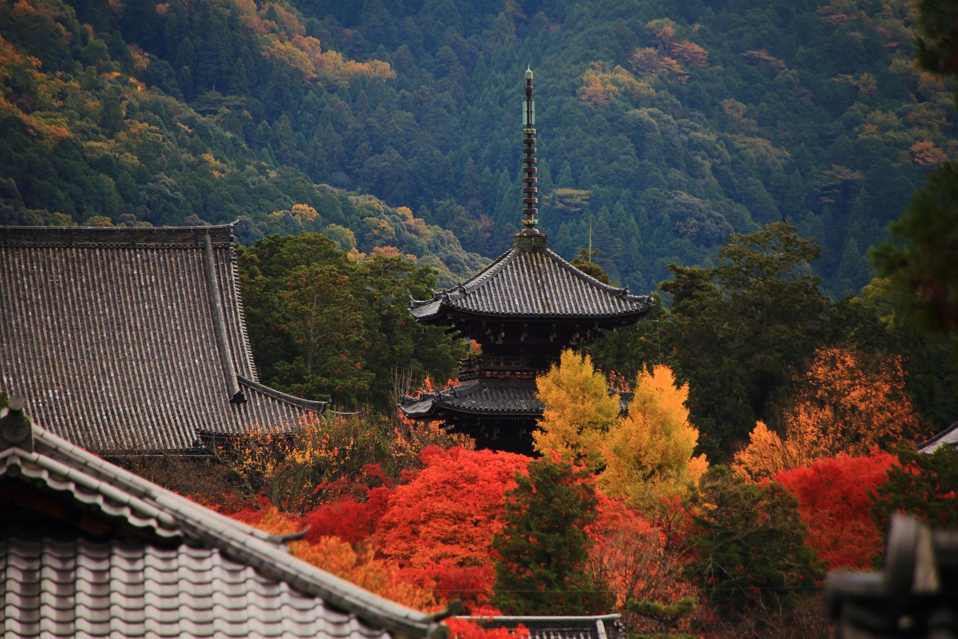 色とりどりの紅葉や銀杏につつまれた真如堂の三重塔
