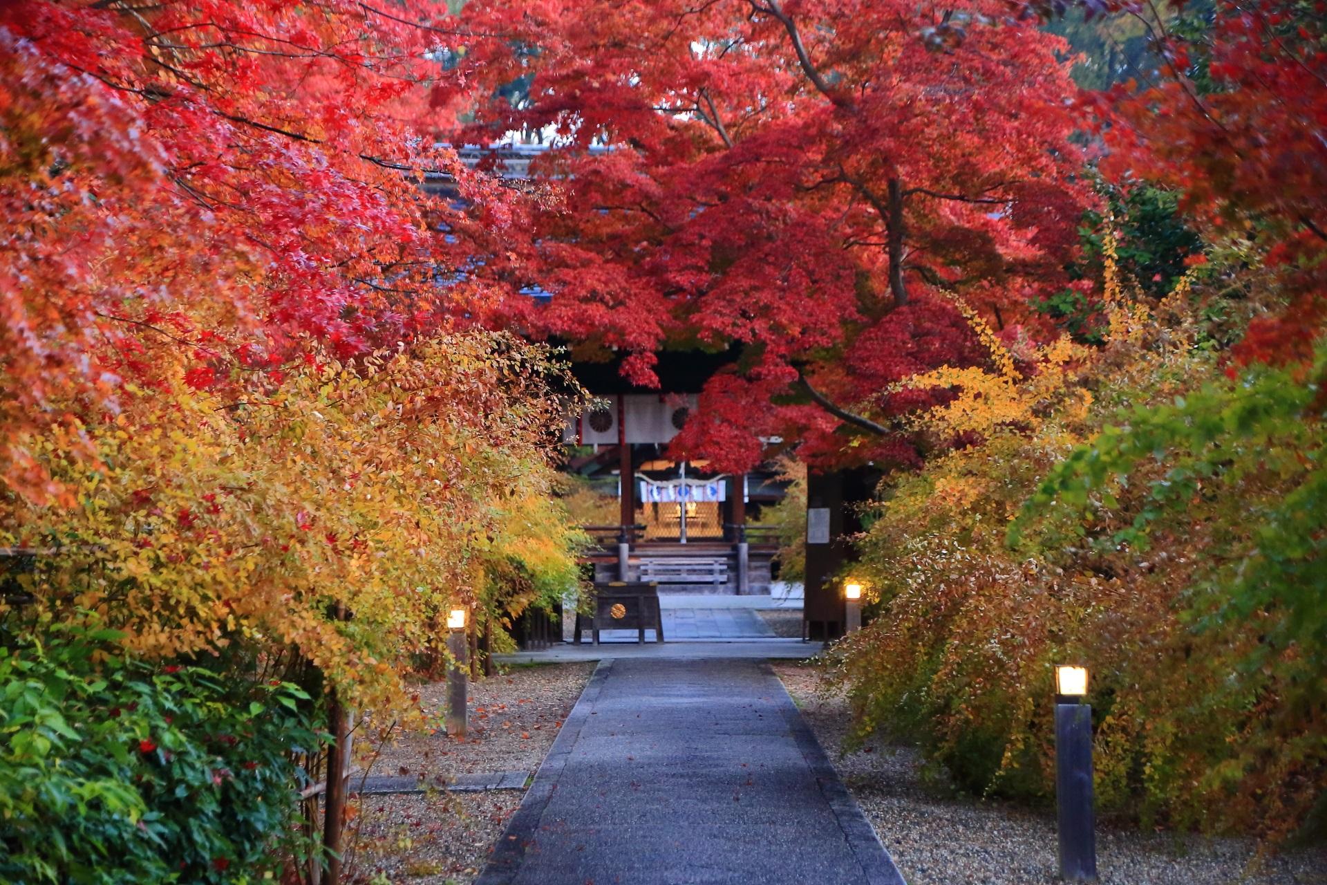 圧巻の紅葉につつまれる梨木神社の神門や参道