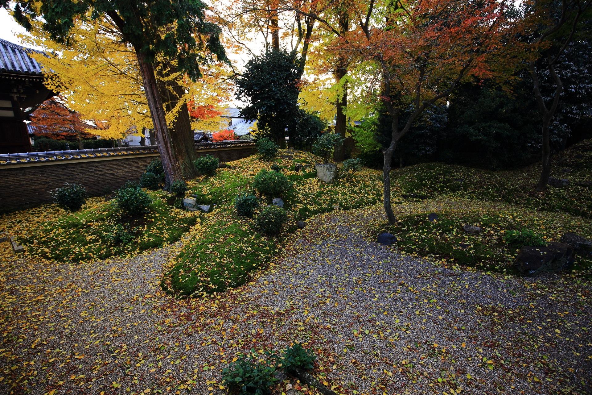 立本寺の緑の苔や白砂を彩る見事な黄色い散り銀杏