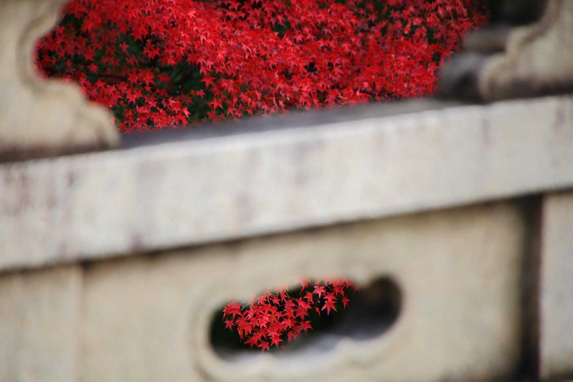 大谷本廟の美しく上品な秋色