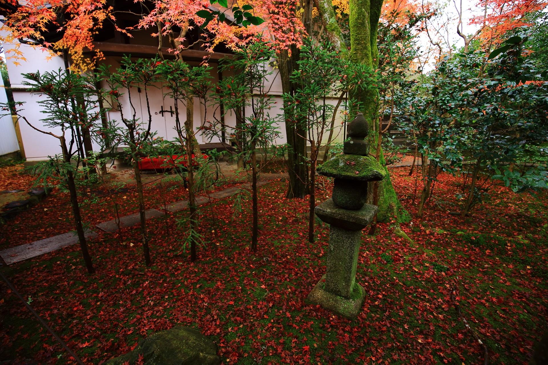 白壁の土蔵と石燈籠をつつむ紅葉と散りもみじ