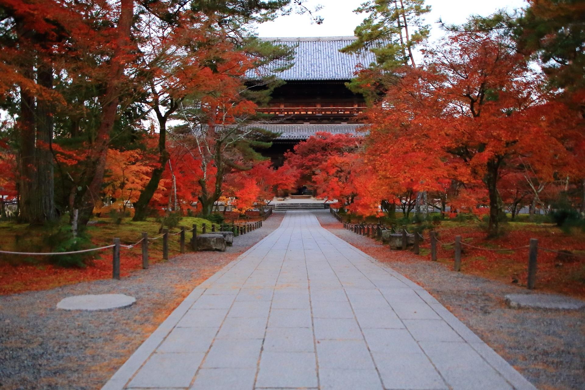 南禅寺の法堂側から眺めた三門と紅葉