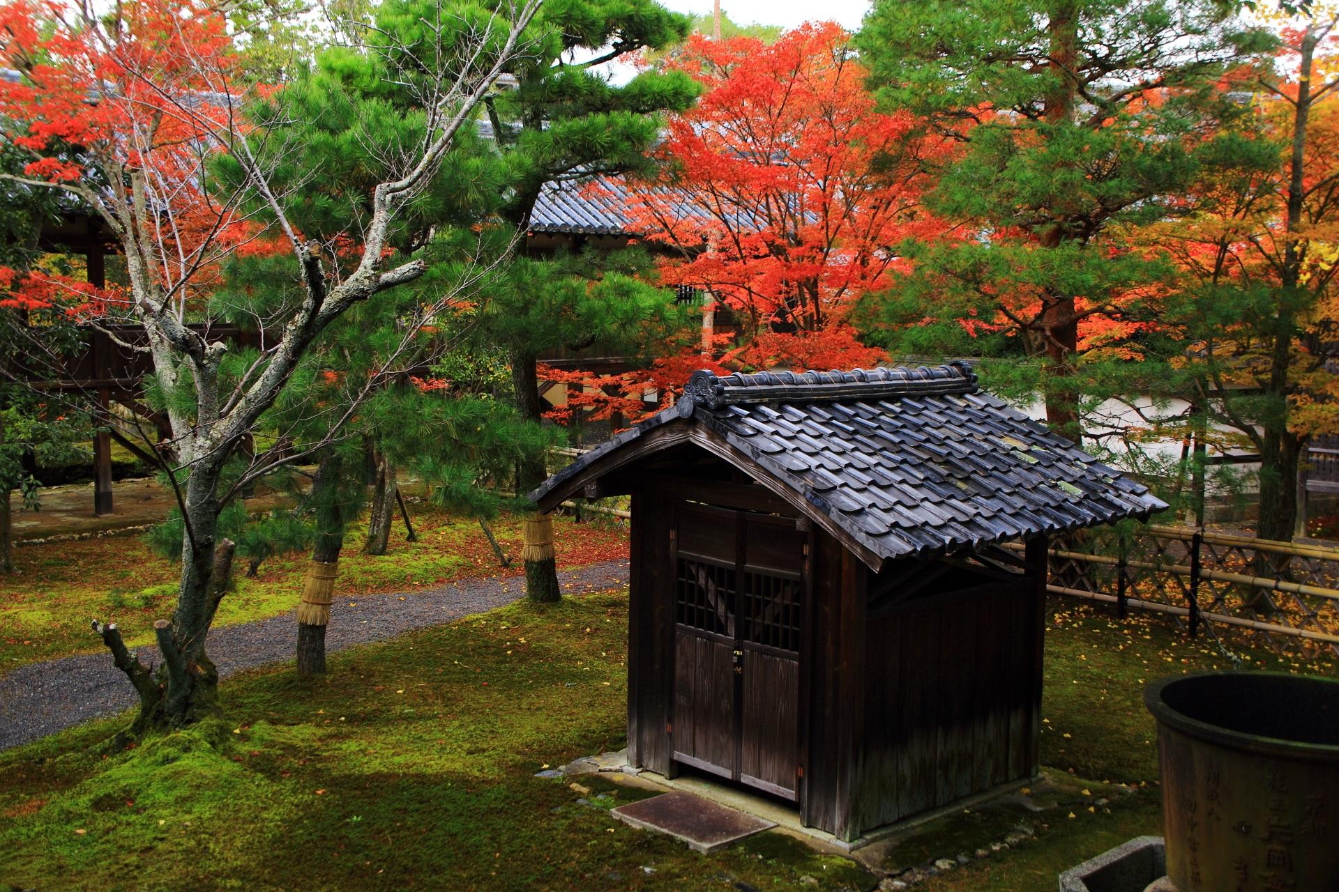 本堂裏(本堂北側)の回廊に囲まれた庭園の紅葉