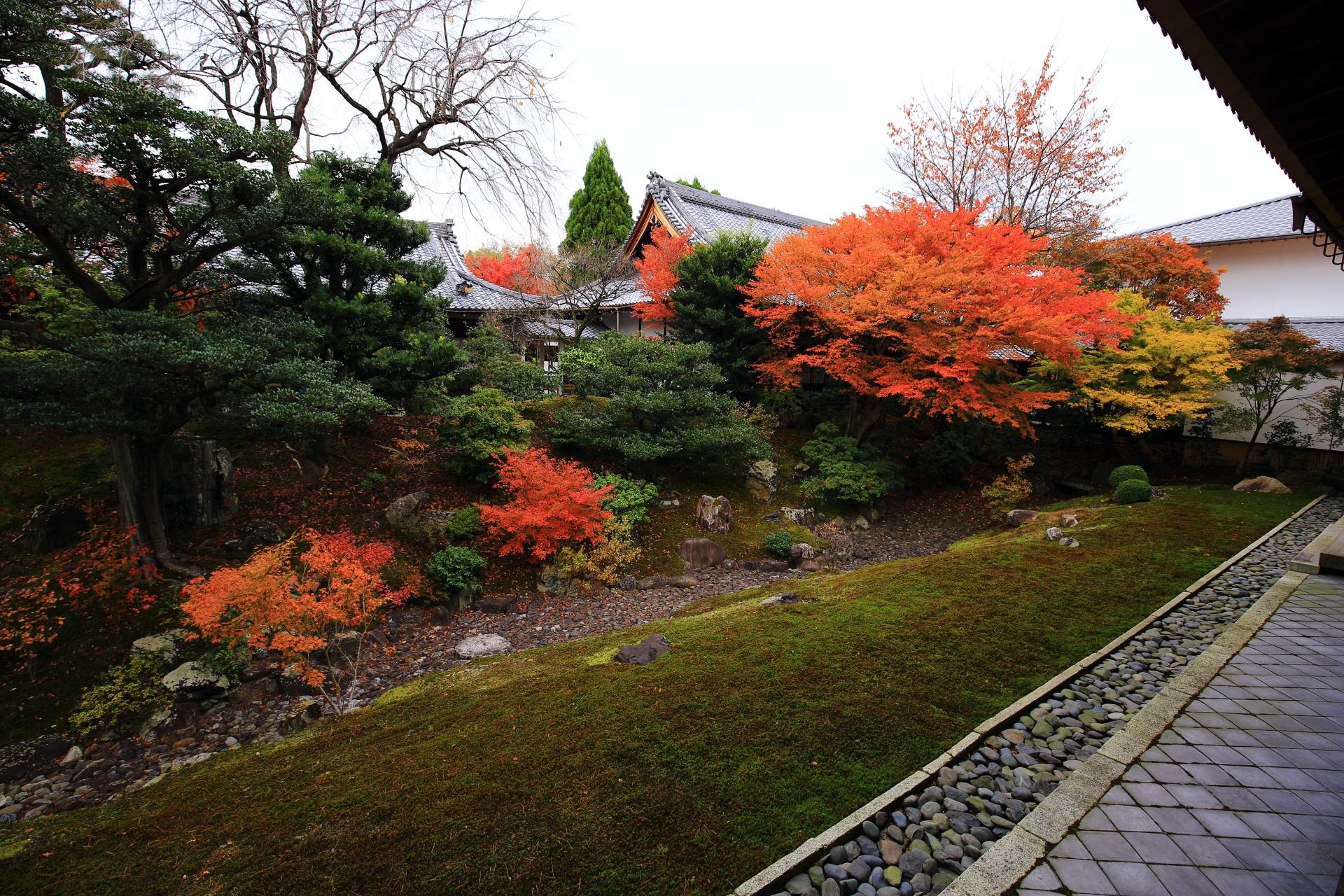 見ごろをむかえた裏方丈庭園の紅葉