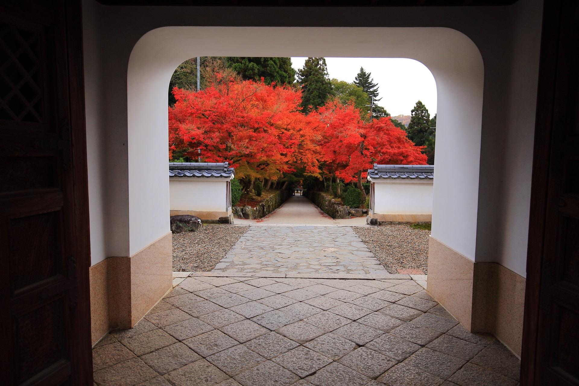 高画質 写真 琴坂 紅葉