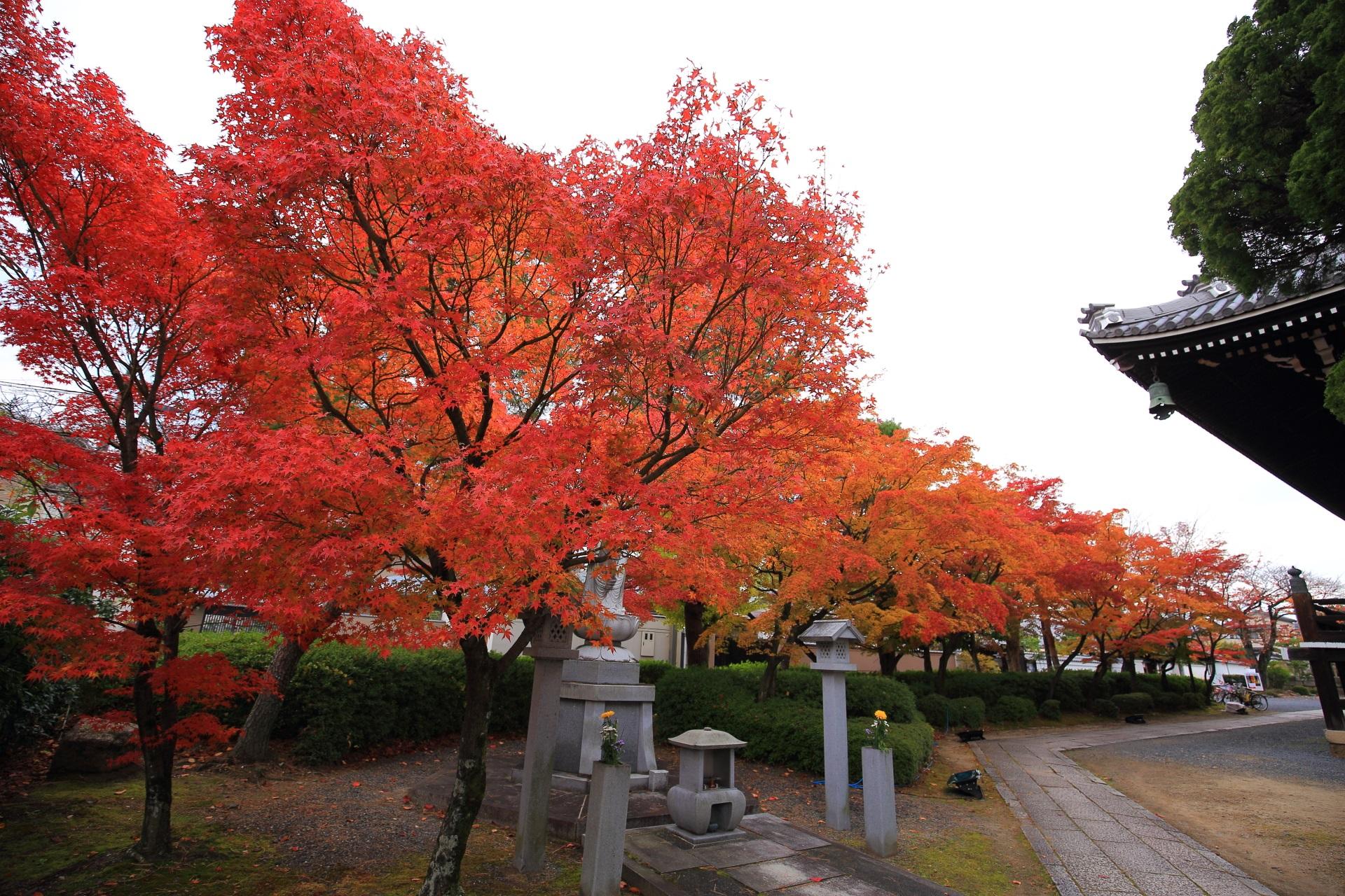 西陣の街中にある紅葉の隠れた名所の妙顕寺