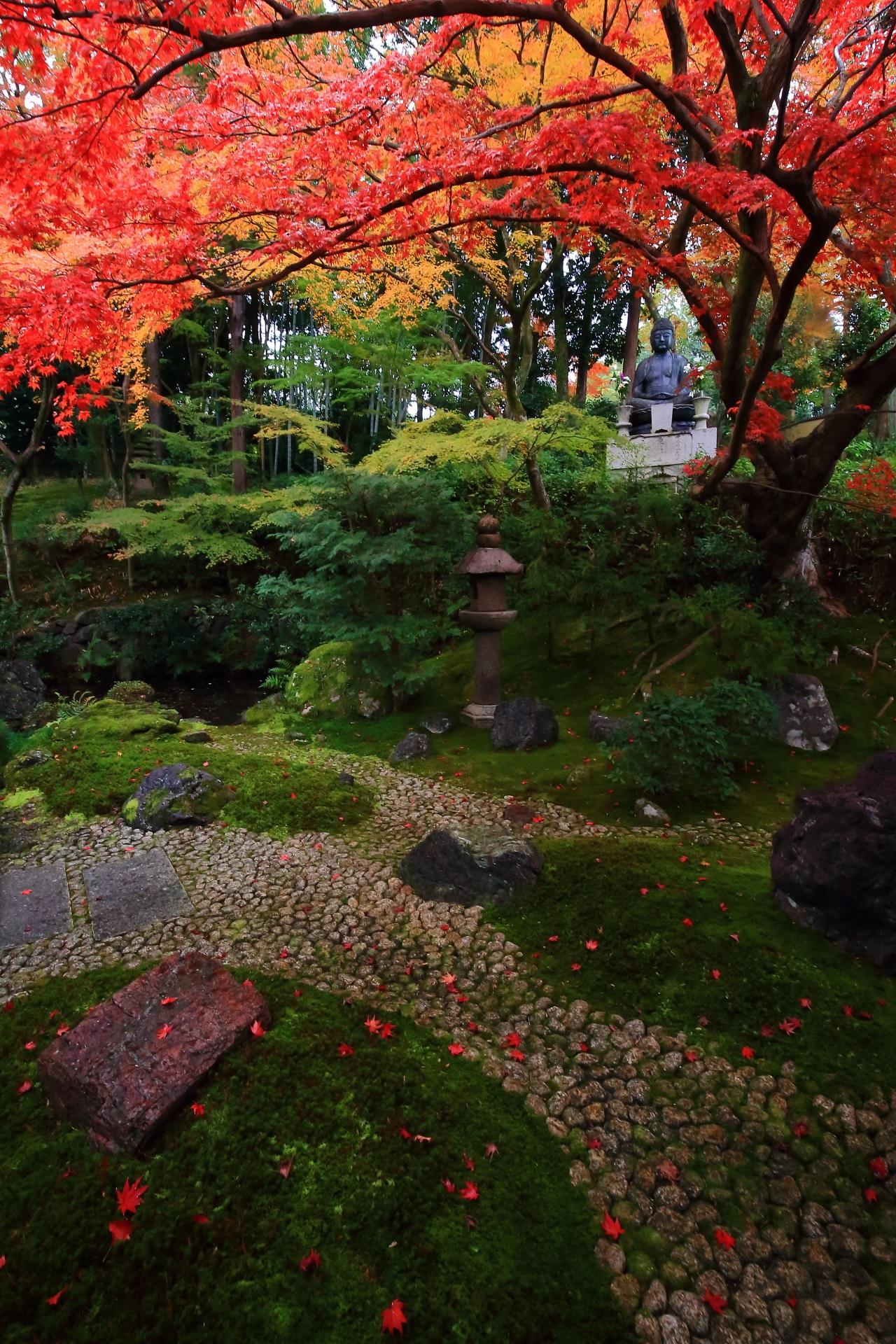 上から下まで上品かつ豪快な紅葉につつまれる美しい庭園