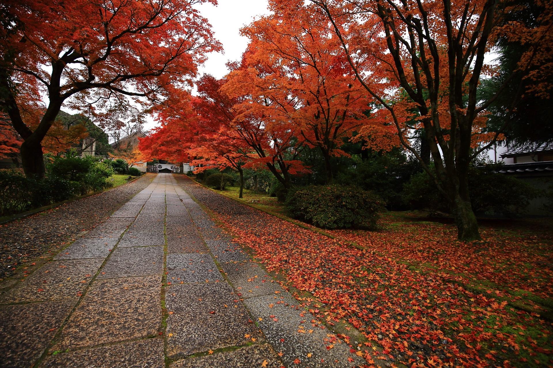 風情ある石畳の参道を華やぐ散り紅葉