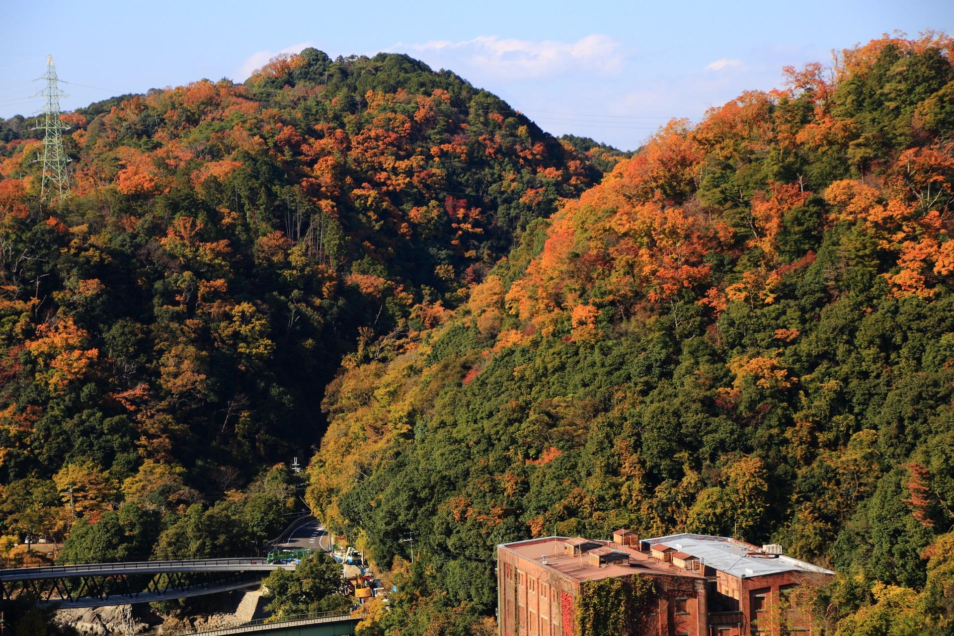 鮮やかなオレンジ色に染まった宇治志津川の山