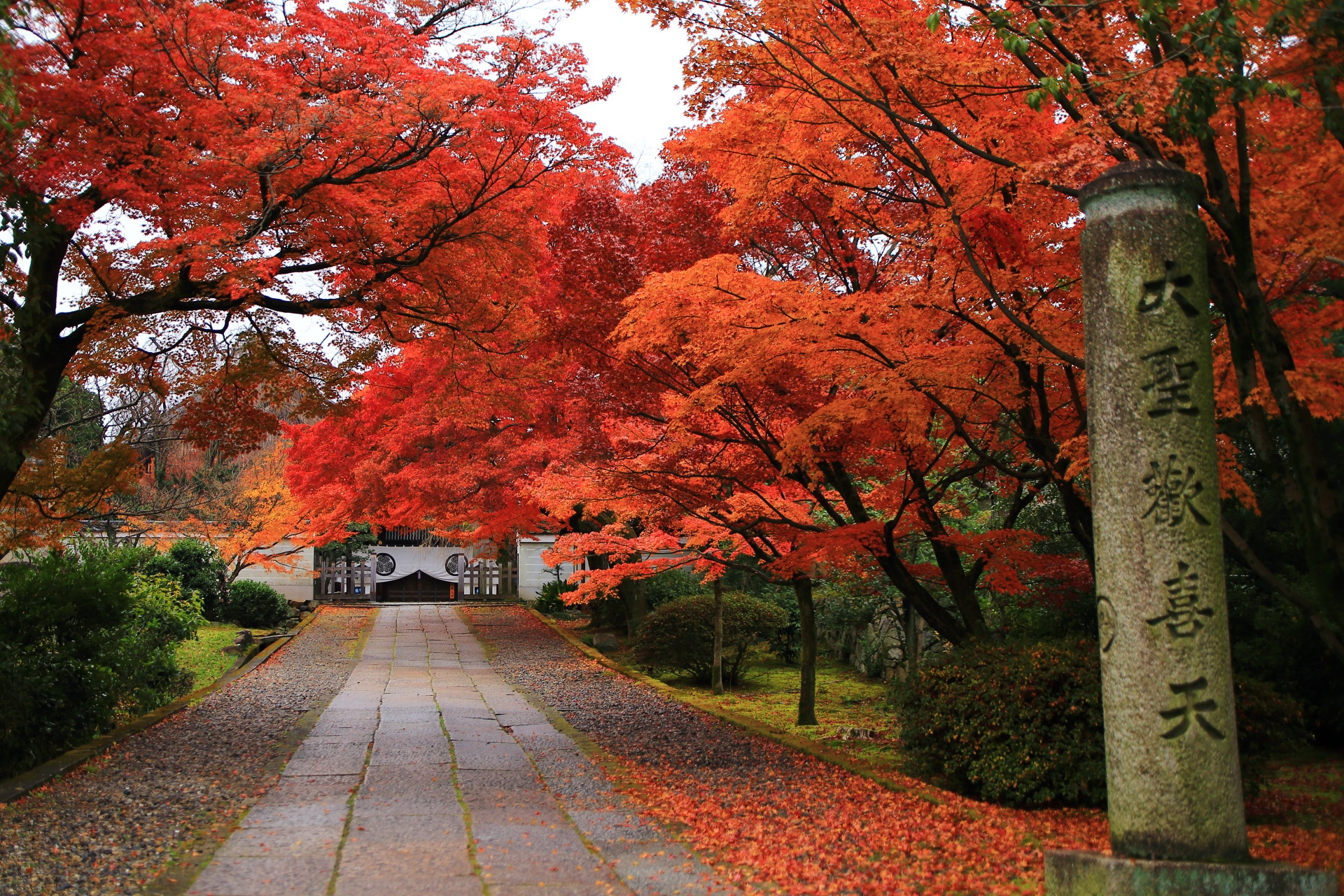 参道の溢れる紅葉と大聖天歓喜天の石柱