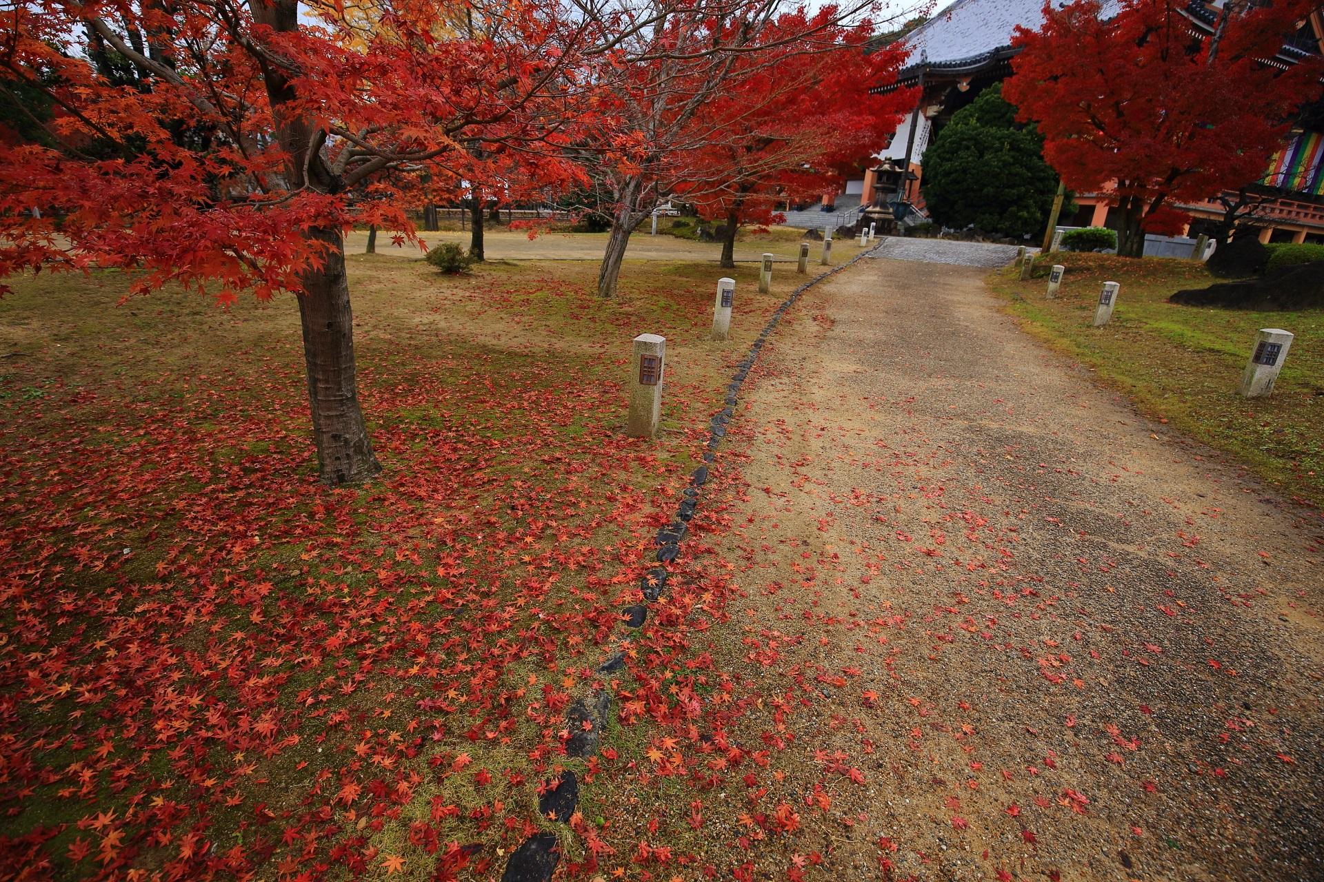 金堂と参道を華やぐ艶やかな散り紅葉