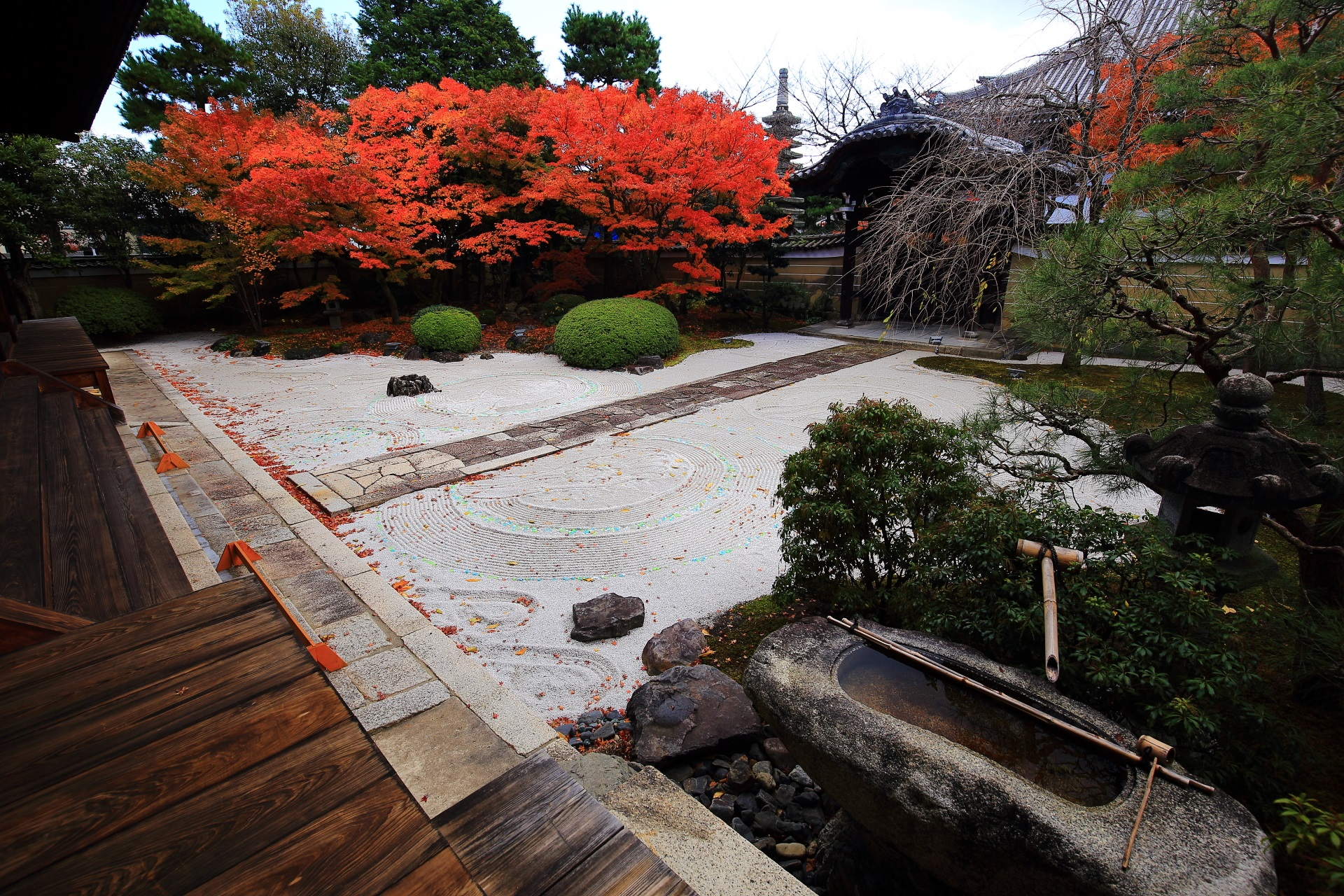 妙顕寺の素晴らしい紅葉と秋の情景