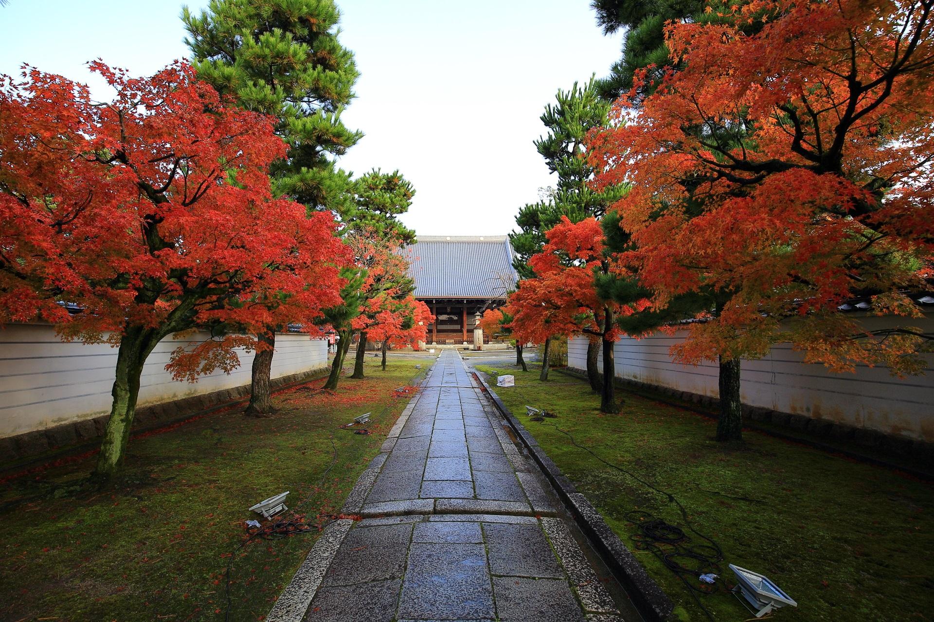 妙顕寺の山門付近から眺める本堂と参道の紅葉