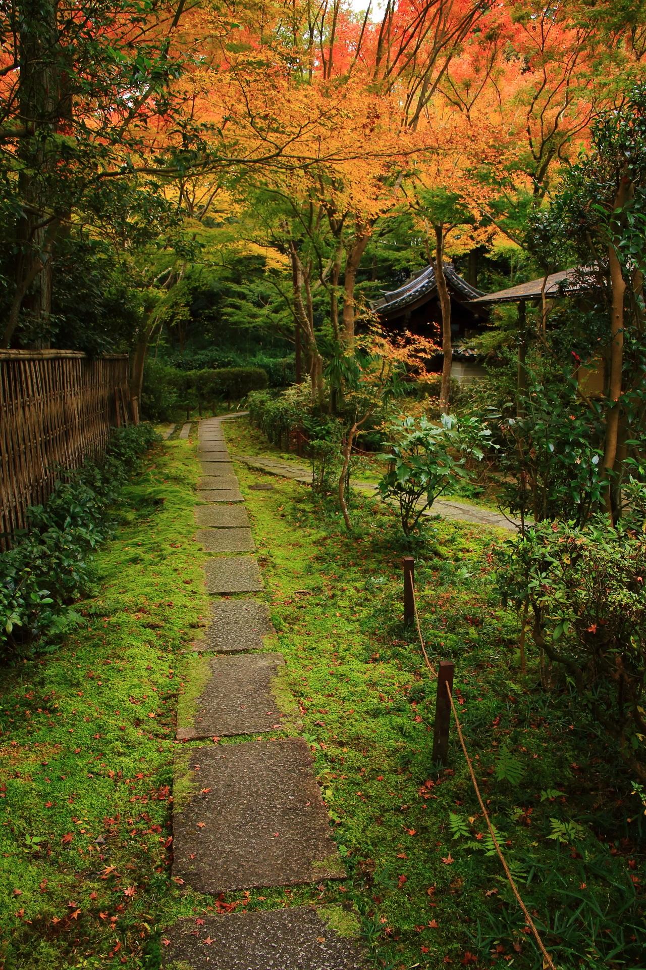 来迎院の茶庭である含翆庭(がんすいてい)へ続く苔と紅葉に覆われた趣きある参道