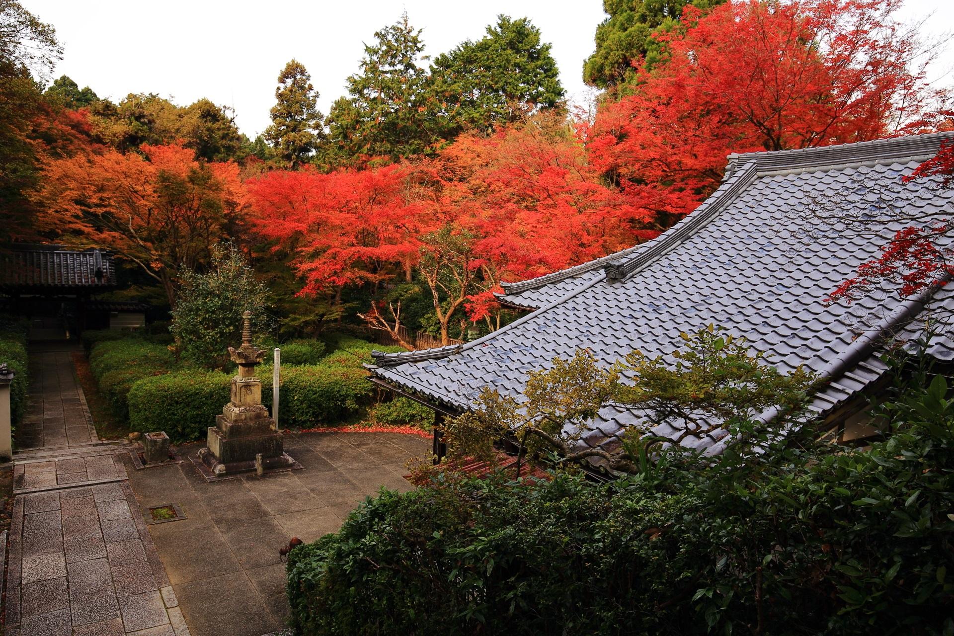 来迎院の素晴らしい紅葉と秋の情景