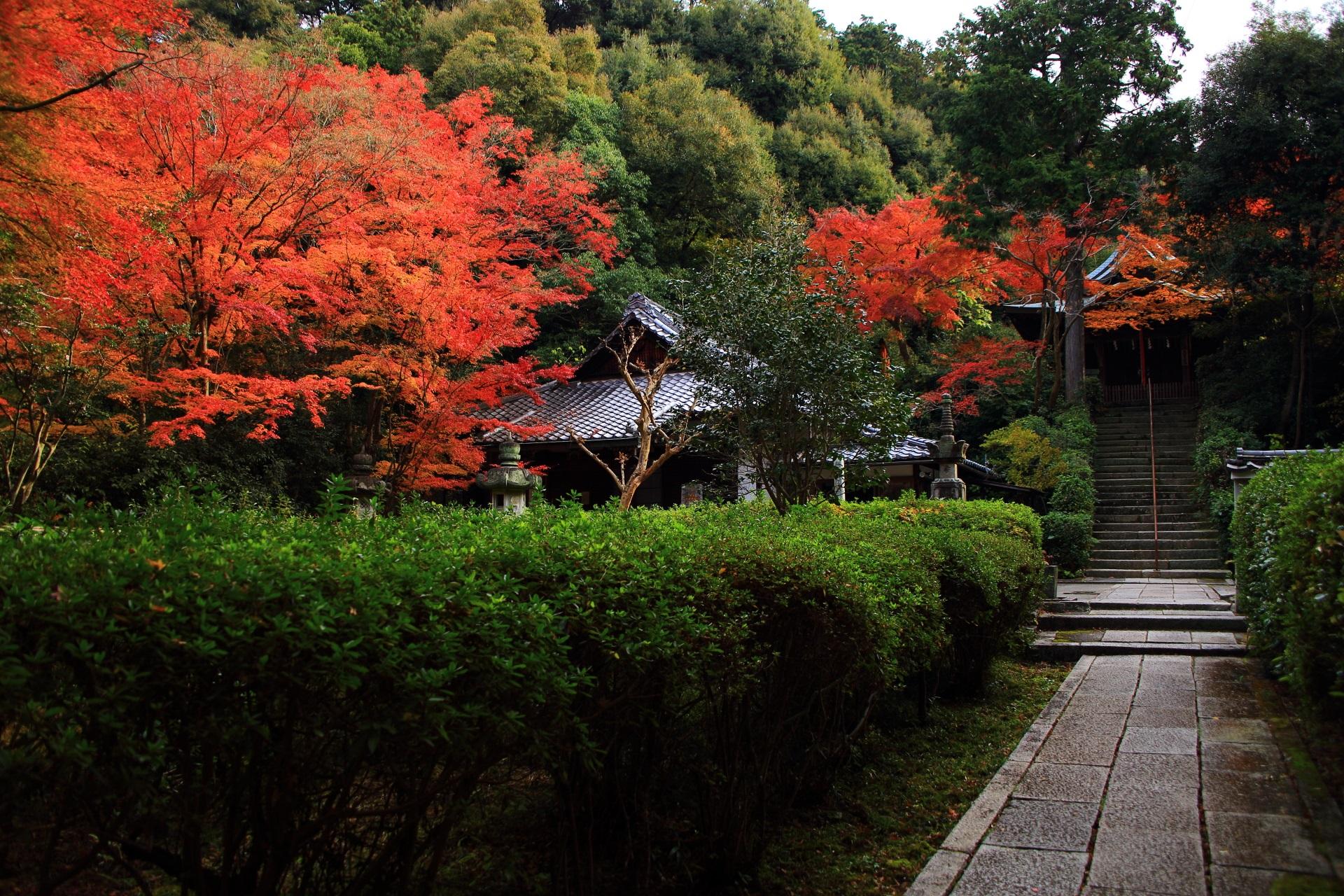 高画質 写真 来迎院 紅葉