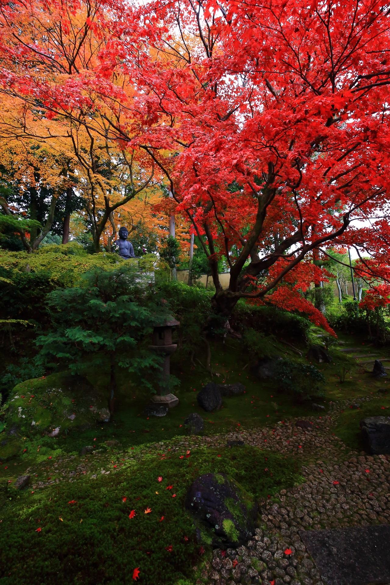 独り占めの素晴らしい静かな栄摂院の庭園