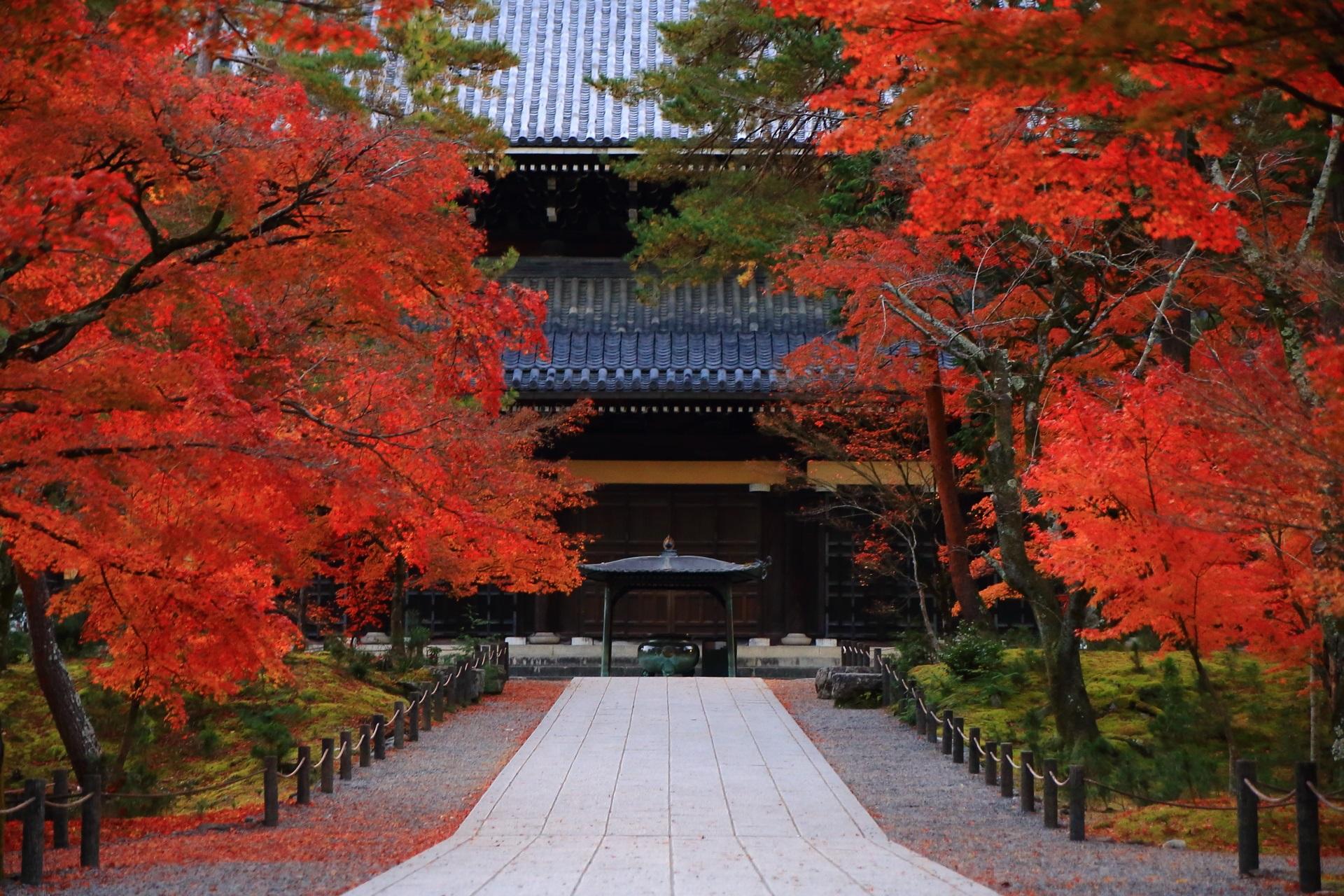 南禅寺の法堂と風情ある参道を彩る極上の紅葉