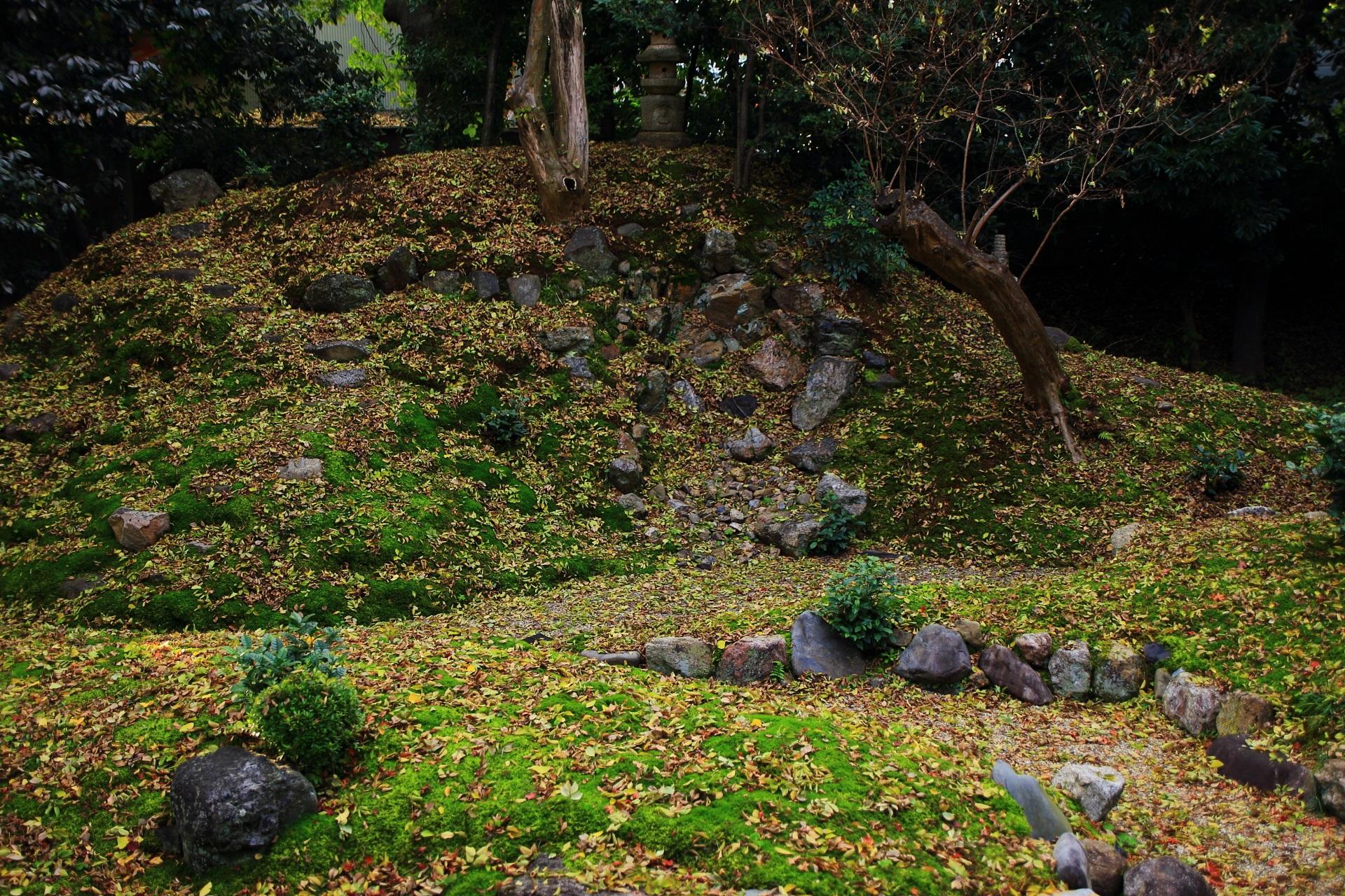 立本寺の庭園正面の苔や岩の築山を彩る散り銀杏