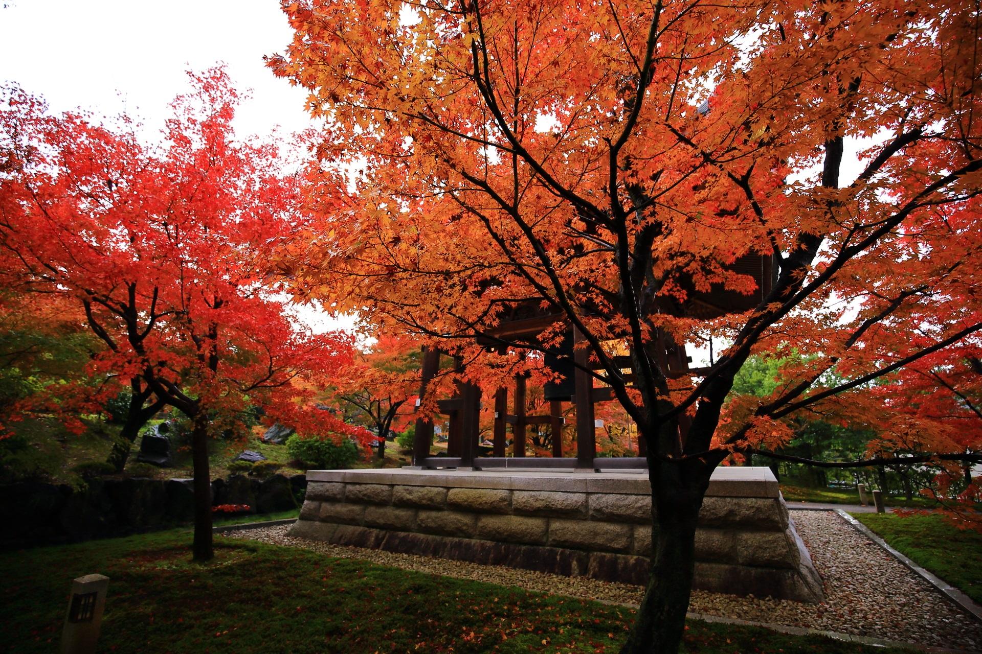 智積院の静かな鐘楼をつつみこむ溢れる紅葉