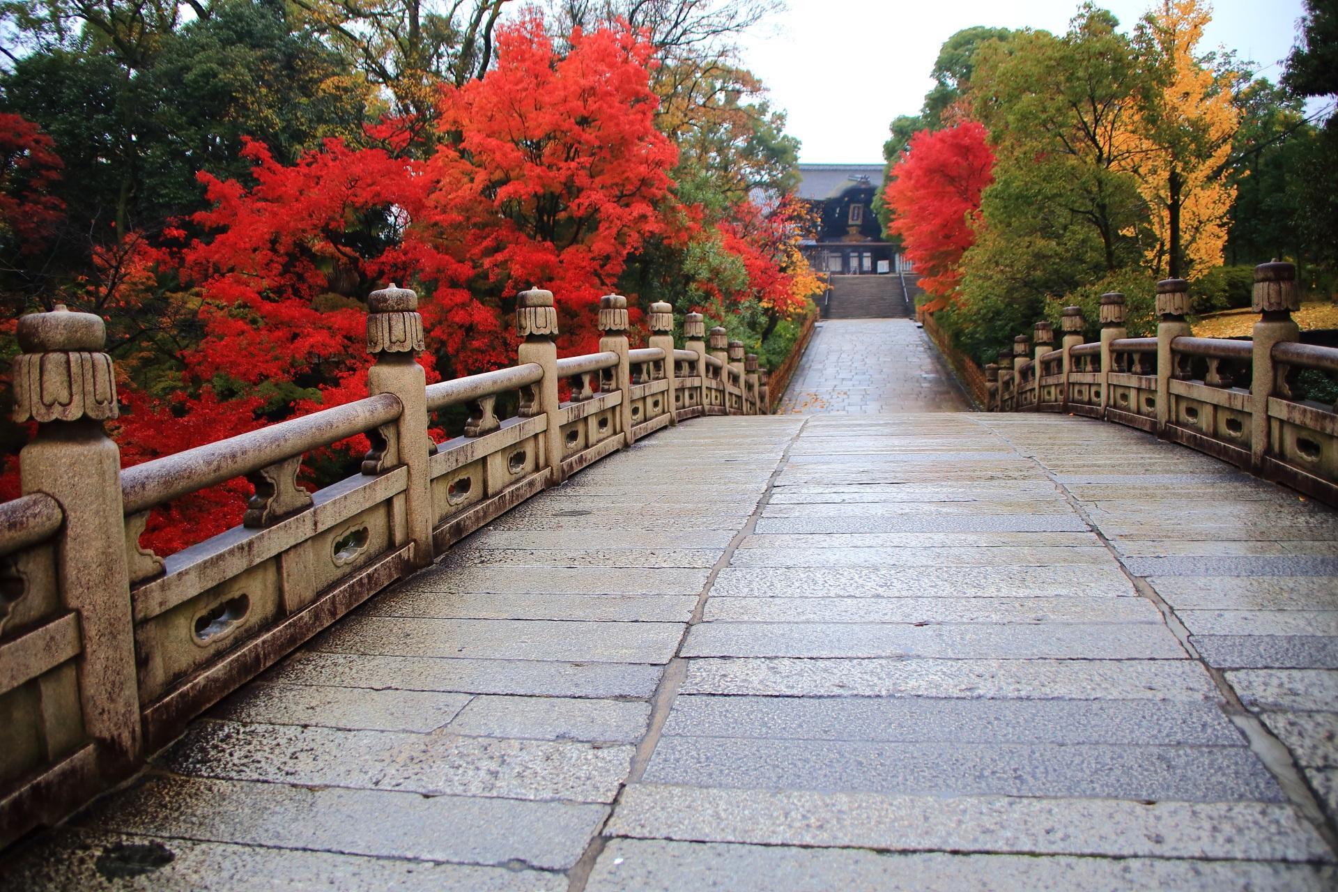 大谷本廟の円通橋から続く総門と絶品の紅葉と銀杏