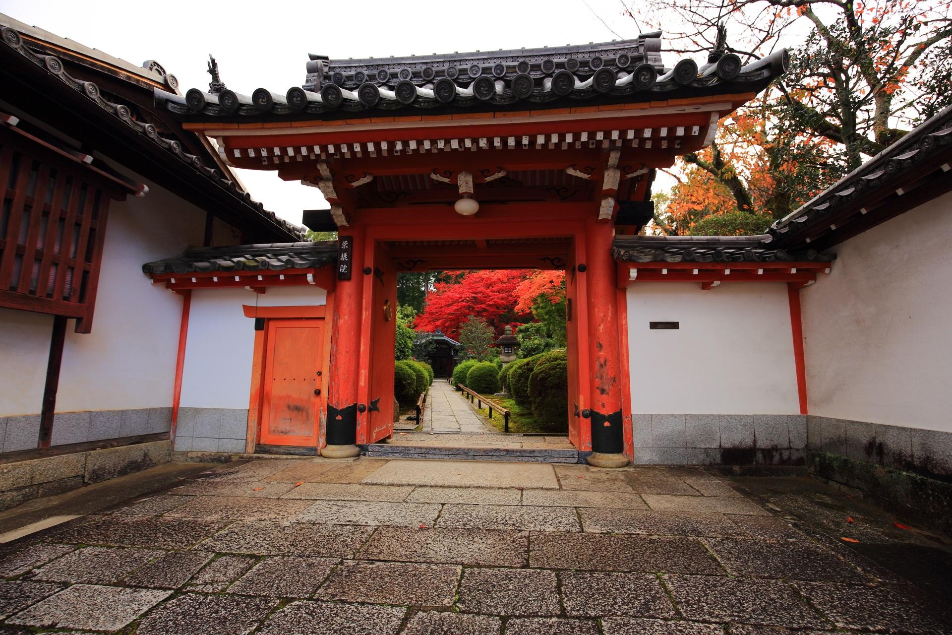 奥に鮮やかな紅葉が見える朱色の上品な表門(山門)
