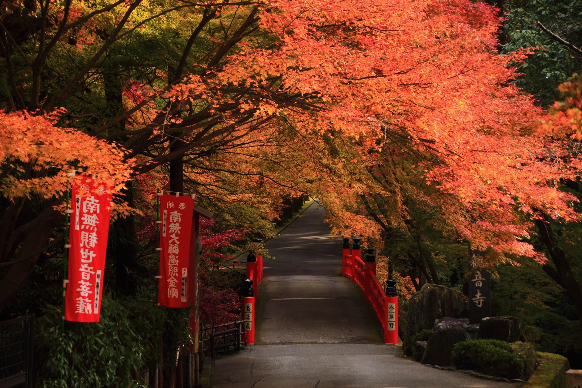 遠目から見ると鮮やかな色合いの鳥居橋