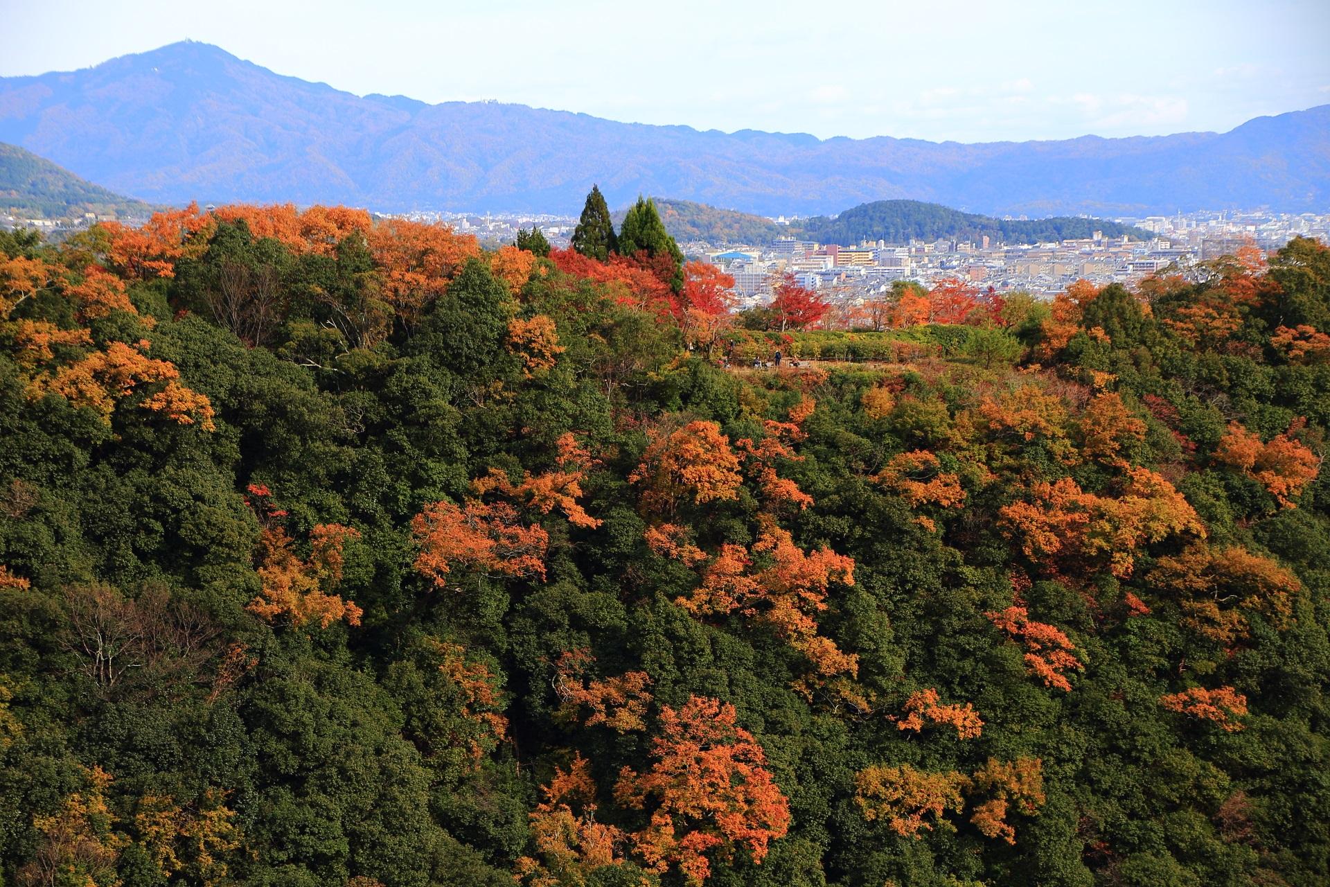 大悲閣千光寺から眺めた色づく山とさらにその向こうに見える京都市街