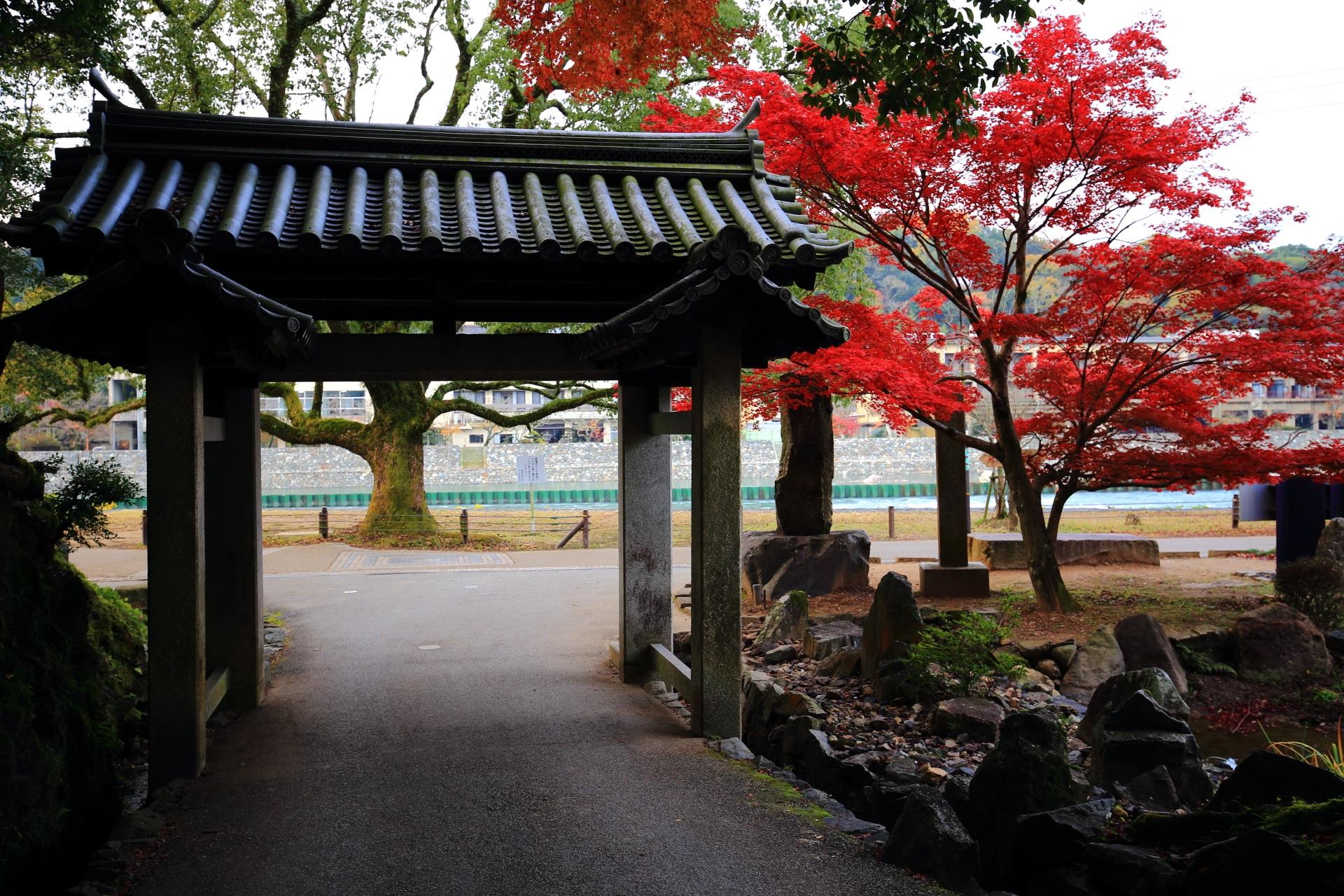 宇治川沿いに建つ興聖寺の石門と鮮やかな紅葉