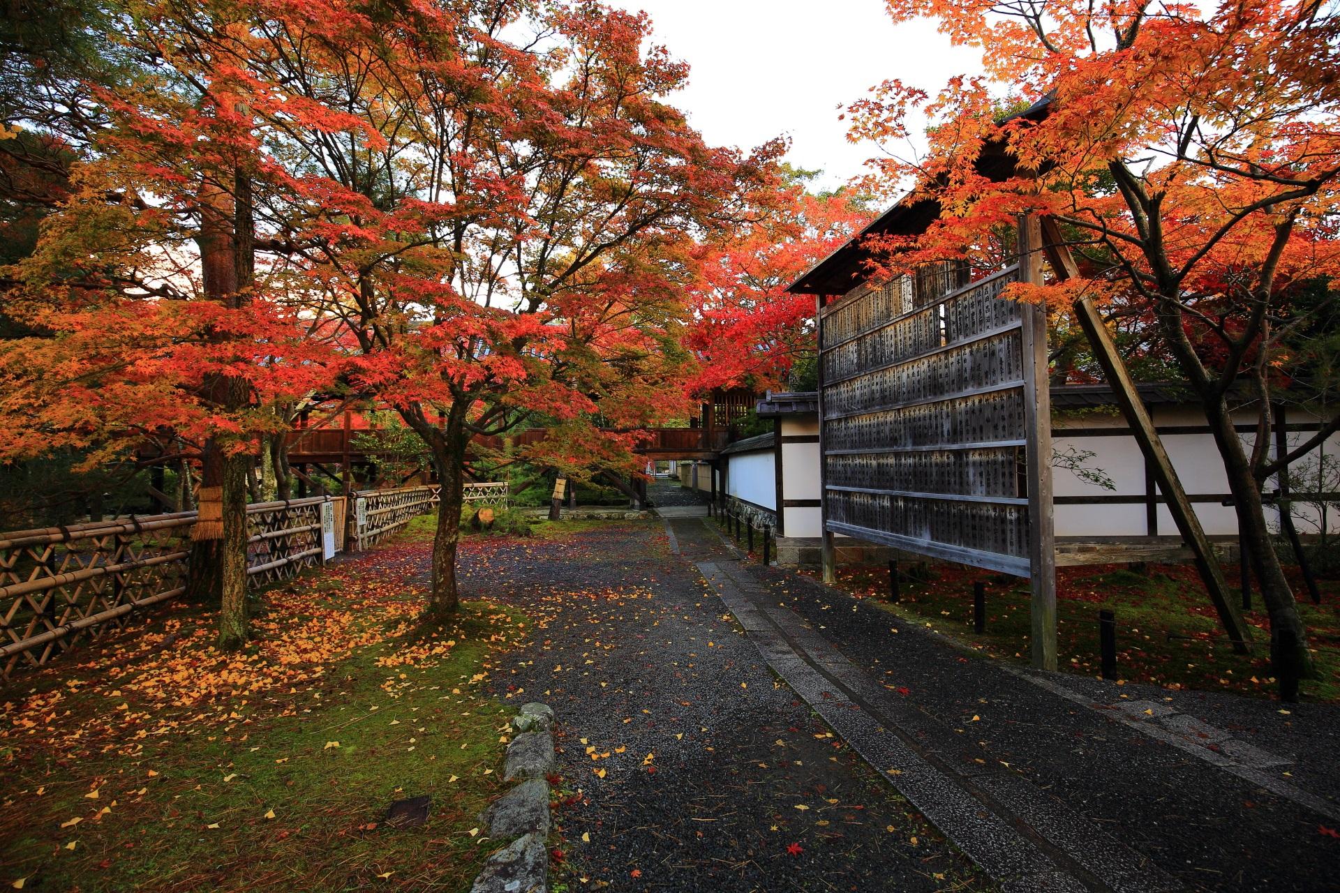 本堂東側参道の名前の書かれた札の掛けられた木の板の紅葉