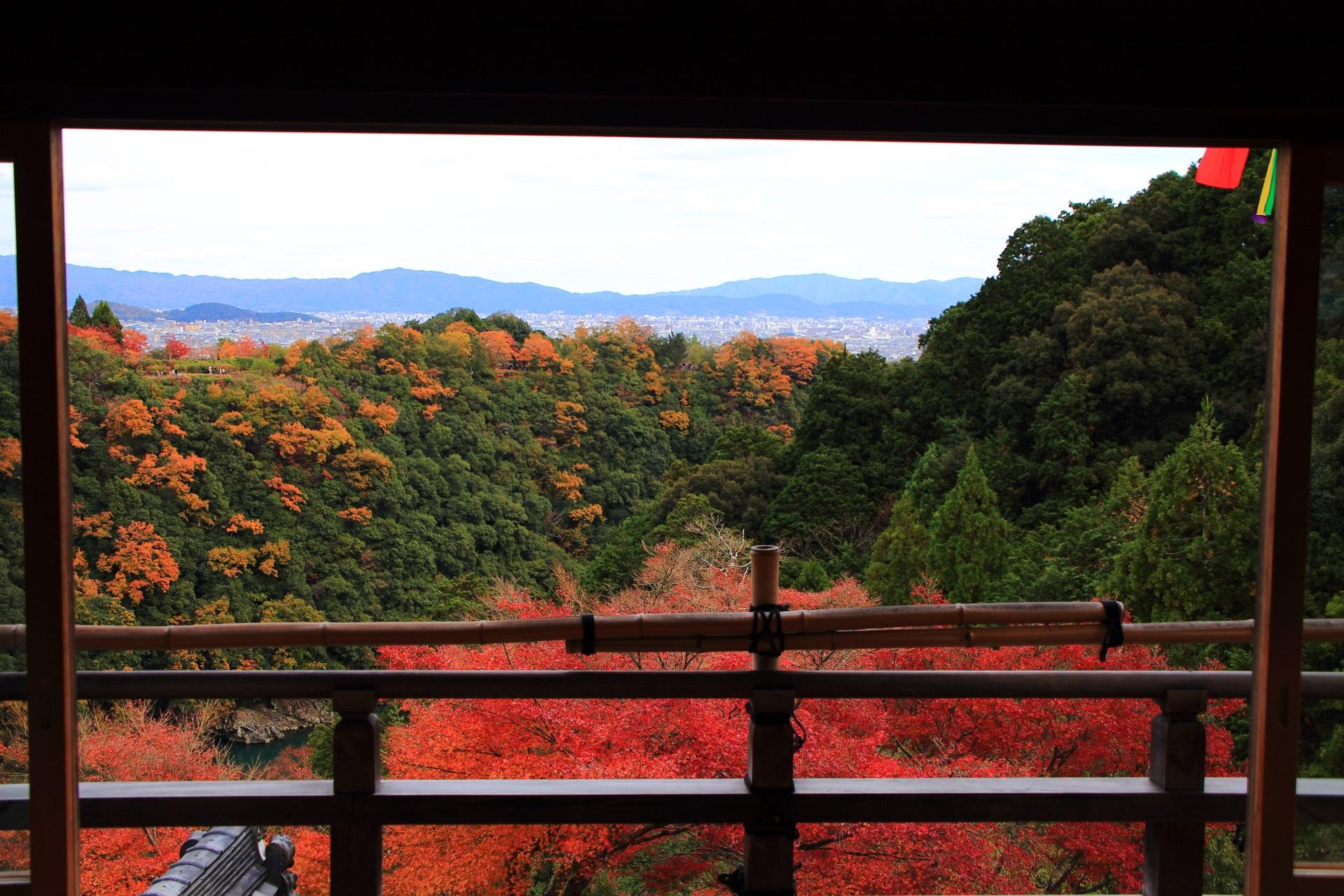 爽やかな秋風の感じられる大悲閣千光寺の紅葉