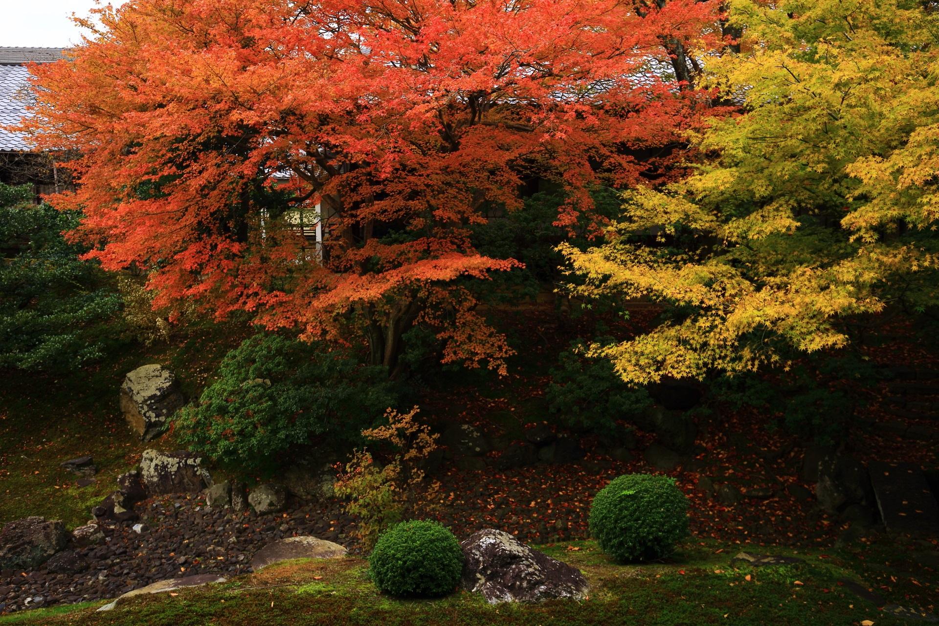 風情ある秋色につつまれる裏方丈庭園