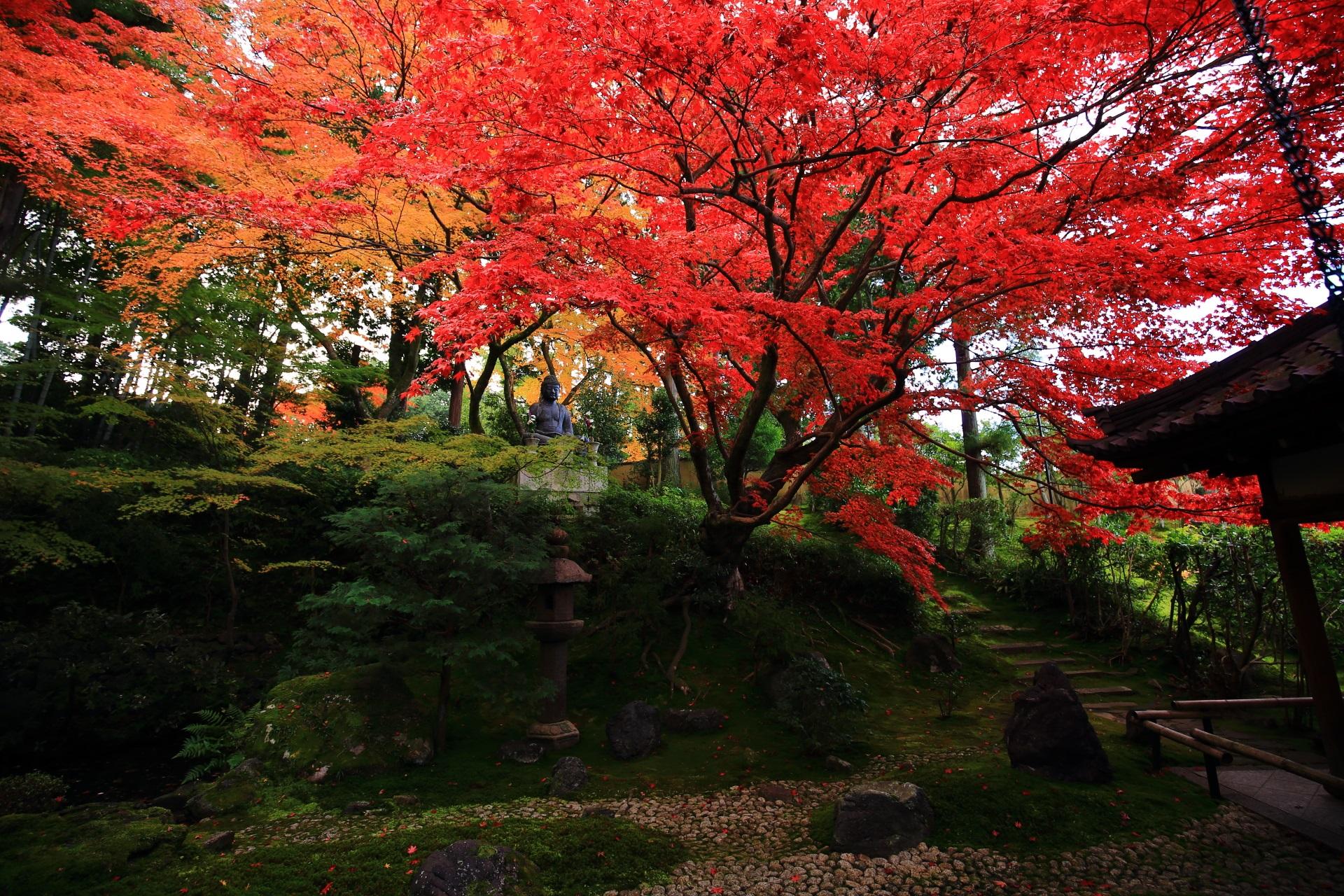 庭園を秋色に染める迫力の紅葉