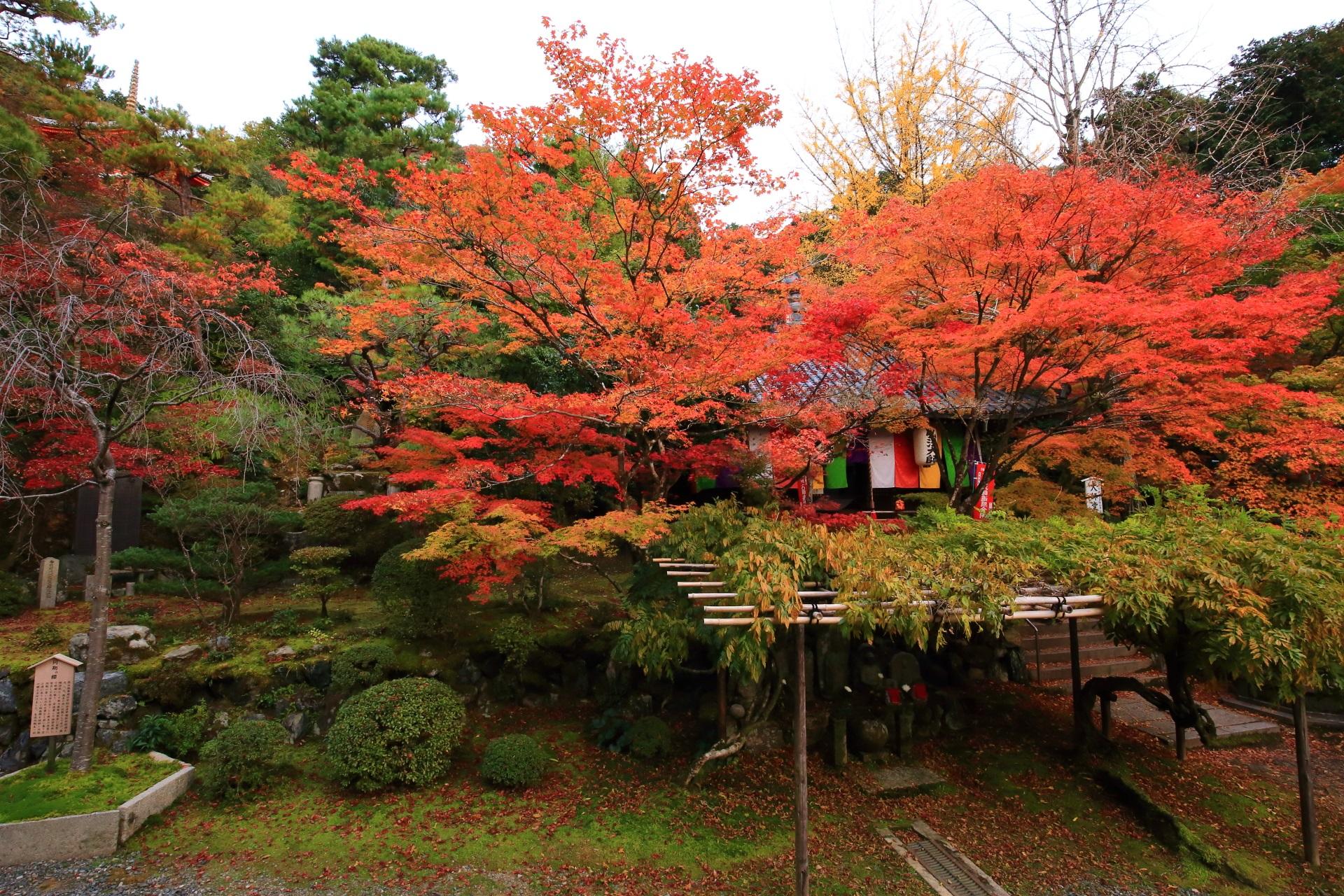 本堂から眺めた大師堂の紅葉
