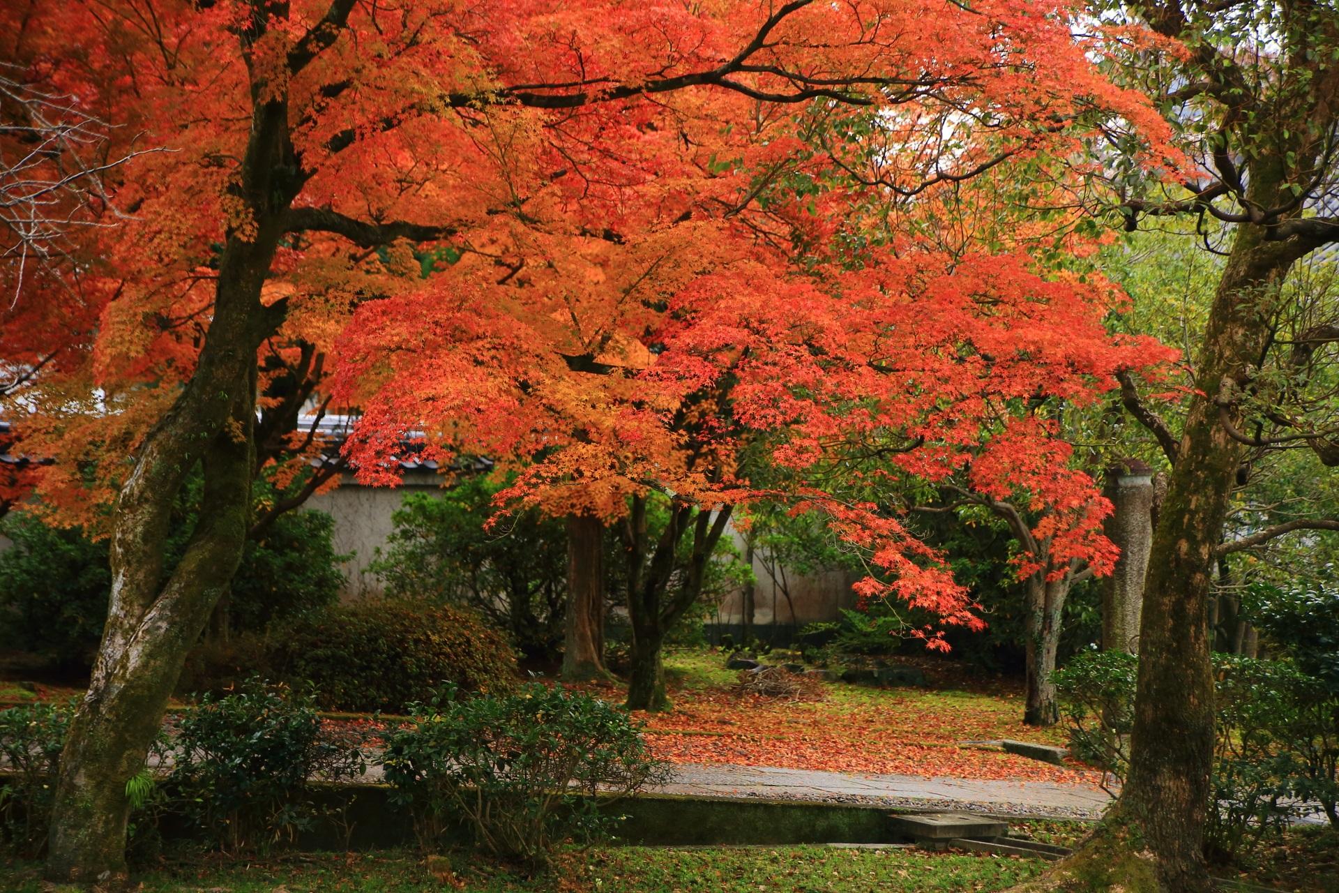 大聖天歓喜天の石柱付近の紅葉