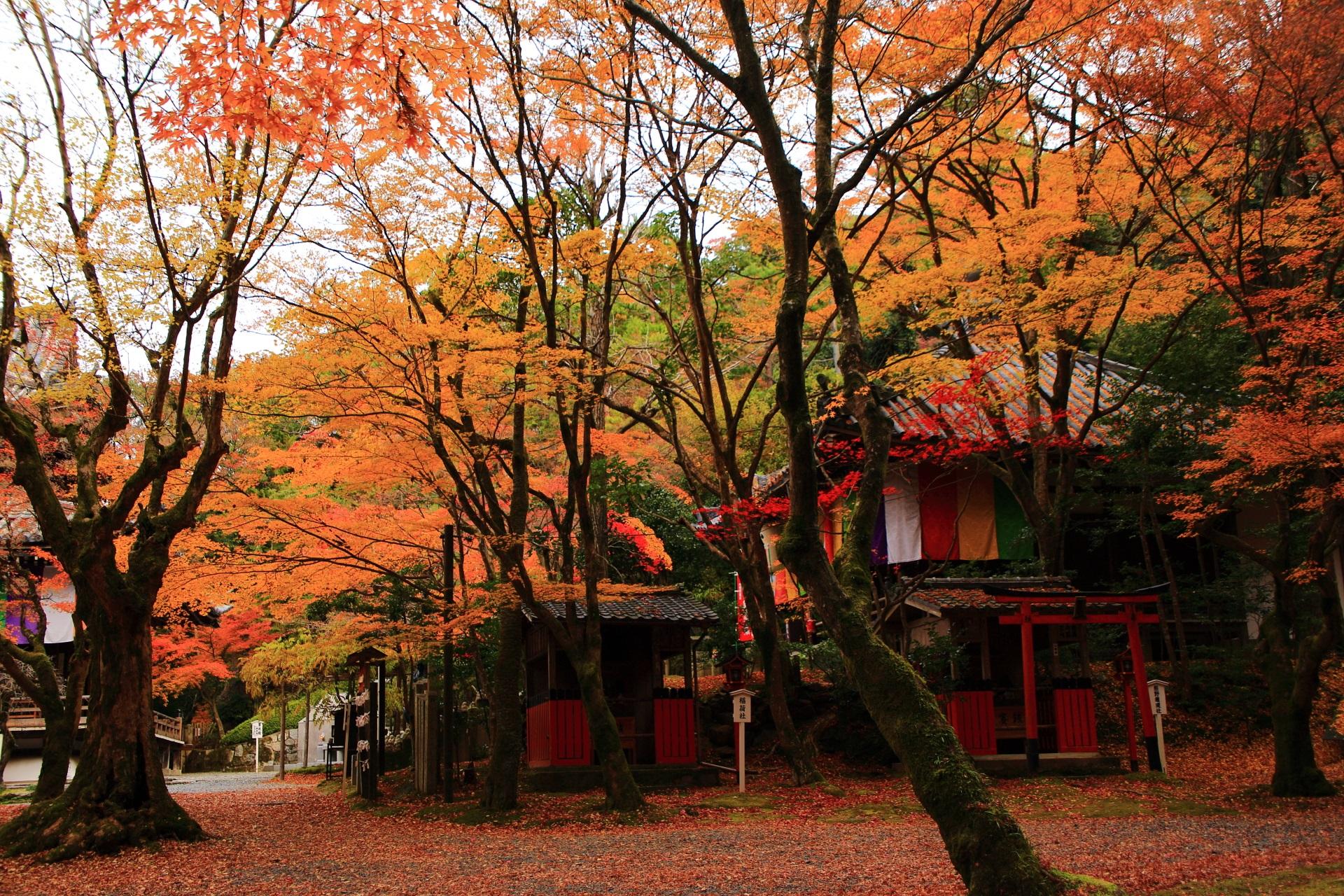 今熊野観音寺の素晴らしい紅葉と秋の情景