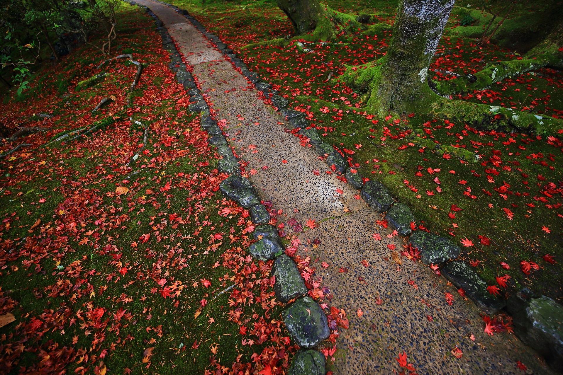 情緒ある参道と苔に溢れる散り紅葉