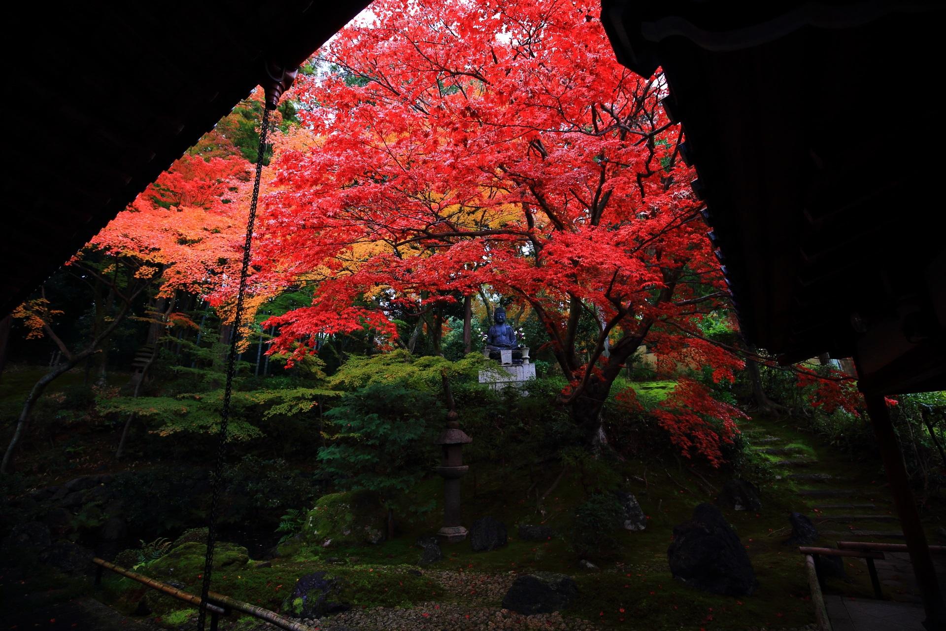 屋根の庇のシルエットと深い色づきの紅葉