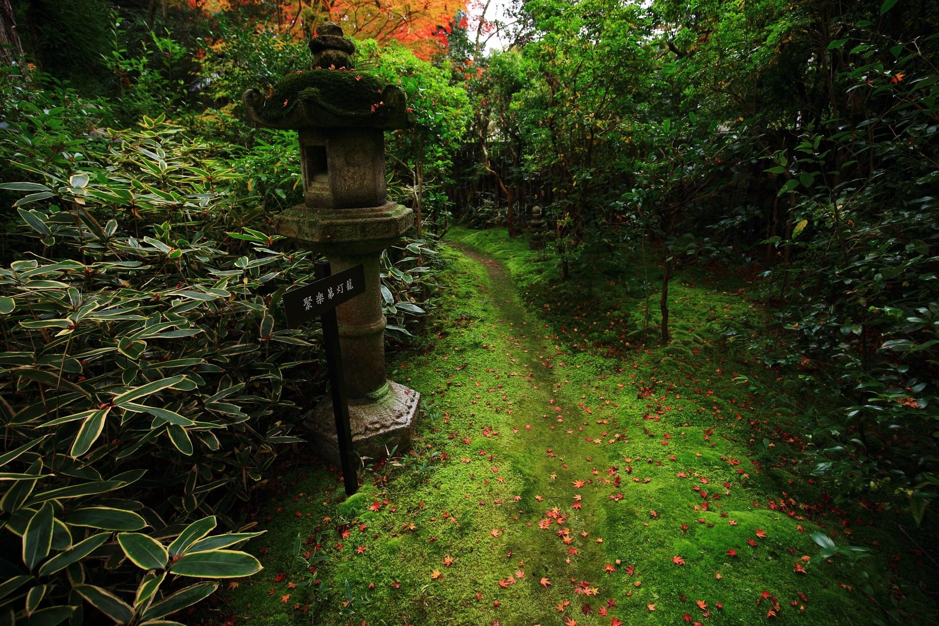 歩くのも気が引けるような綺麗なふかふかの苔の参道が続く含翆庭