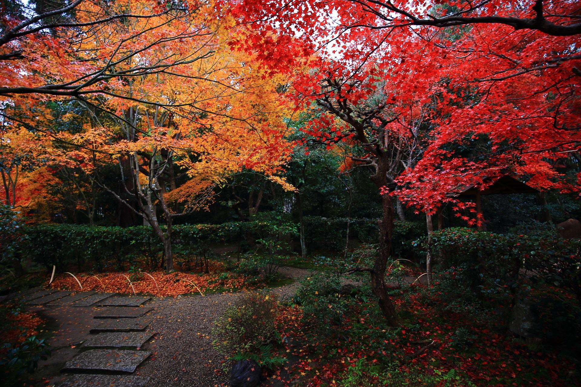 至るところにできている多彩な秋色の空間