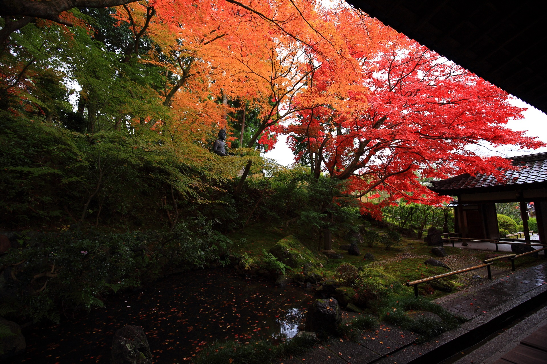 池のある池泉式庭園の奥から眺めた紅葉と入口の門