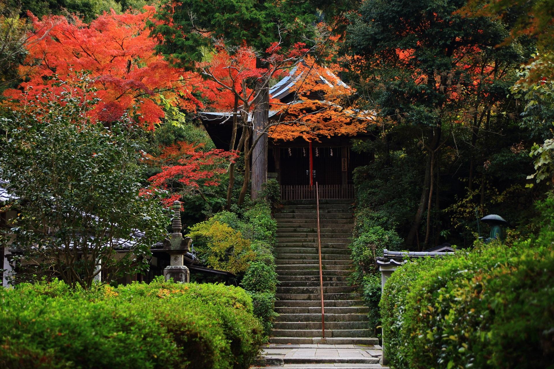 深い秋色に染まる石段の上に佇む荒神堂