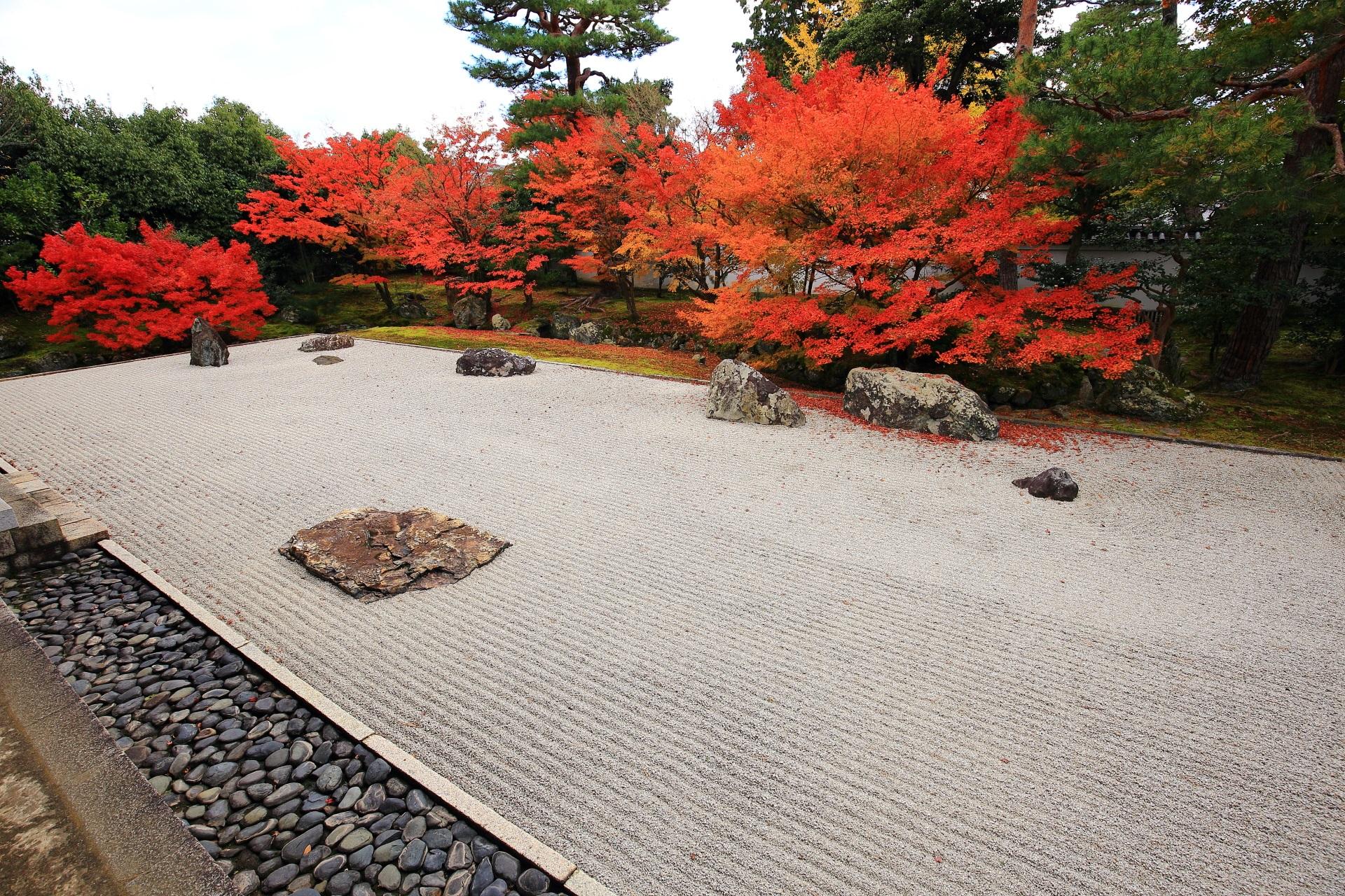 上品な雰囲気の漂う秋の開山堂庭園