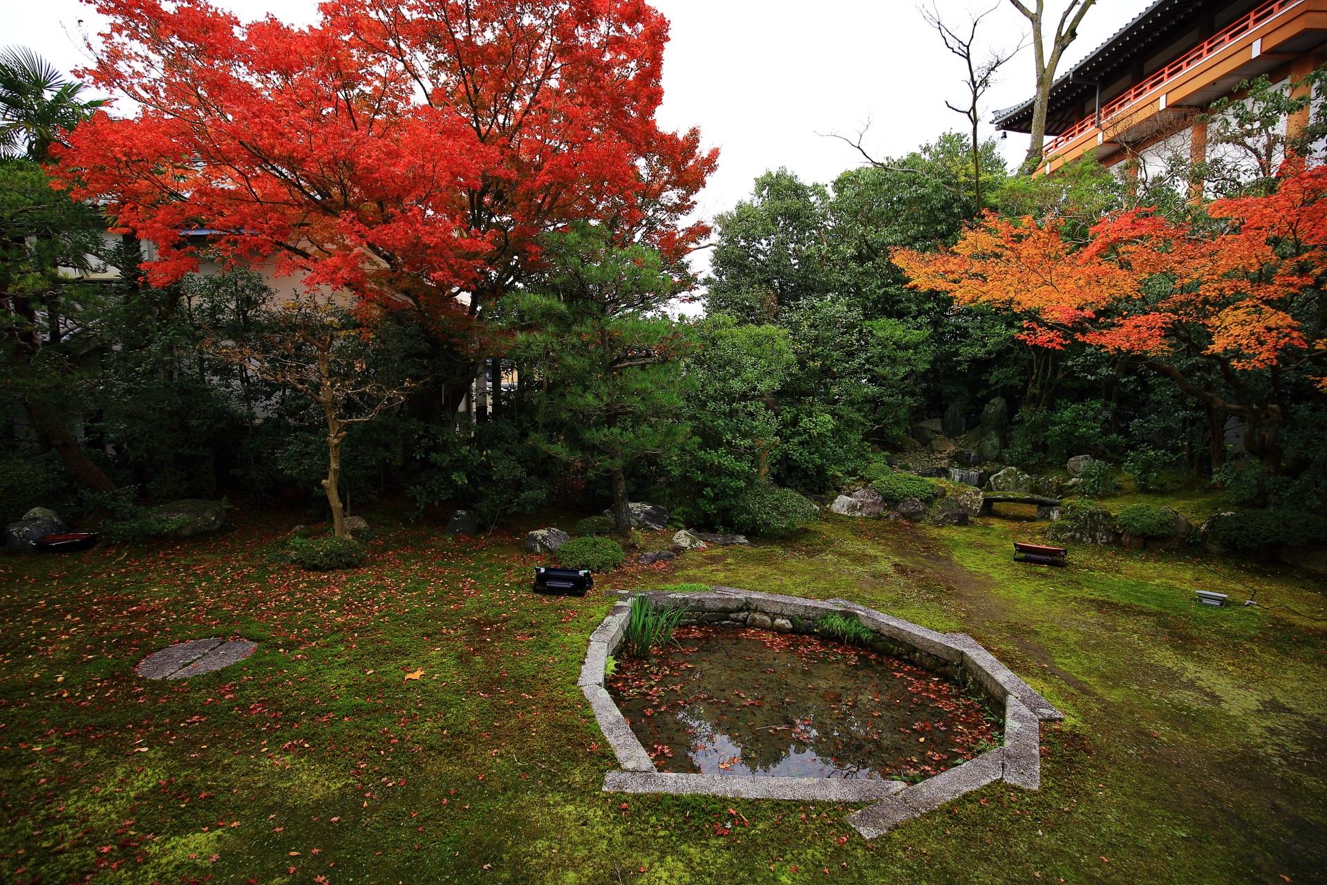 紅葉に彩られた日蓮を表した巴の庭