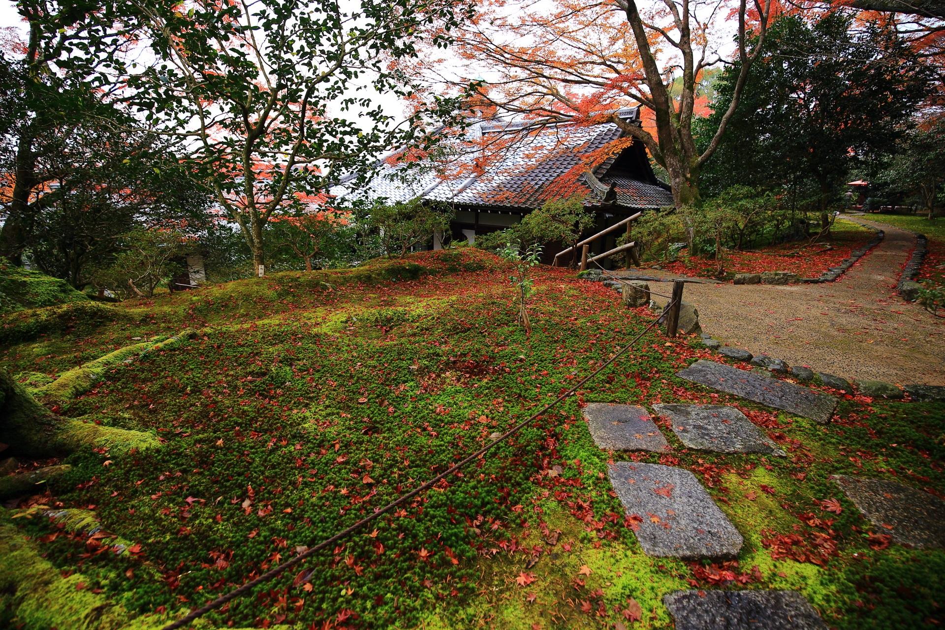 霊鑑寺の本堂と広がる苔と散り紅葉