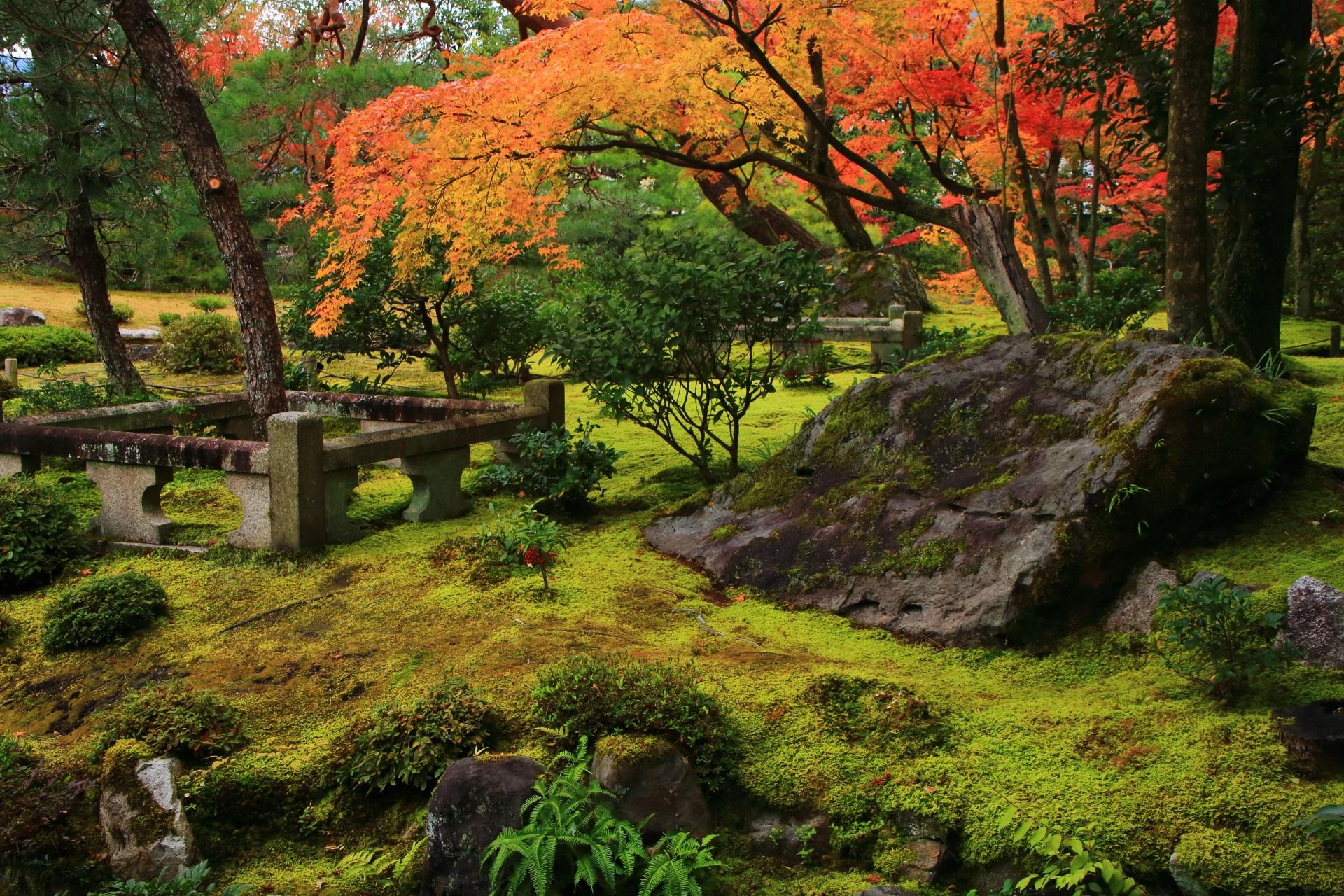 美しい苔や岩なども演出する無鄰菴の風情ある紅葉と庭園